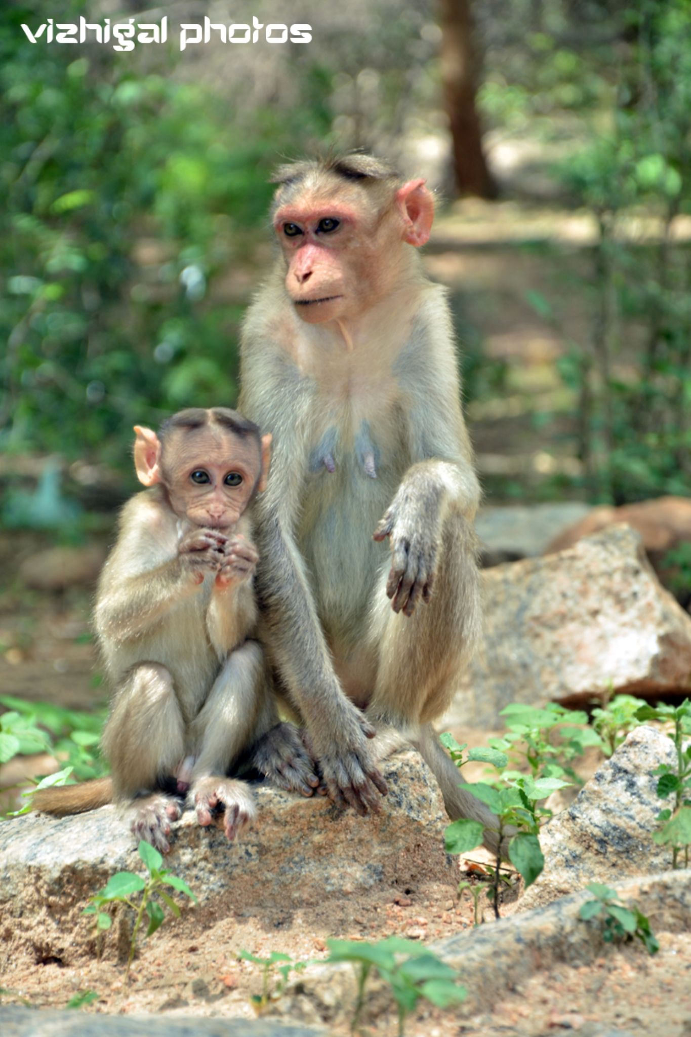 MOM AND SON by Vizhigal Photos