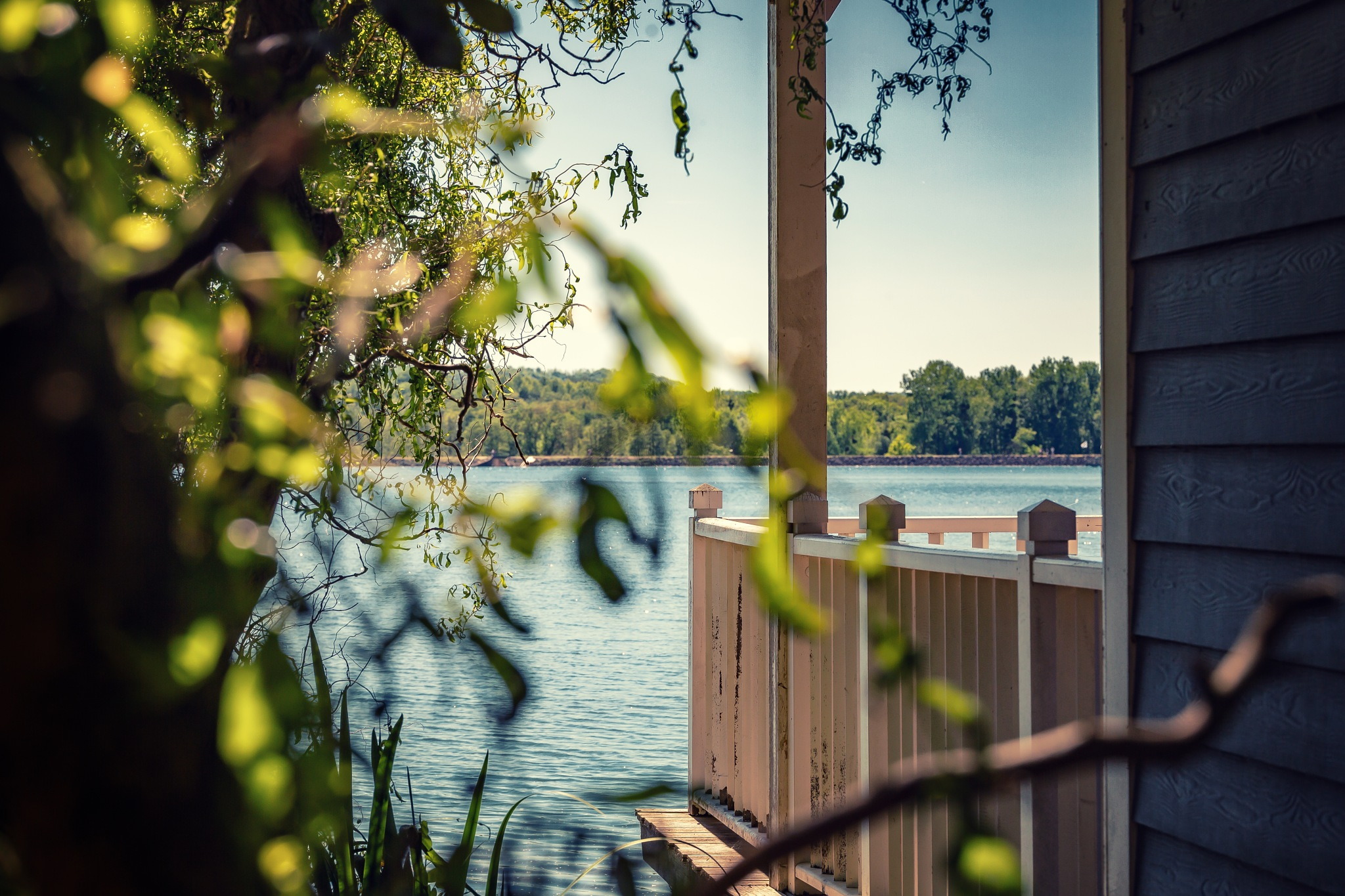 Another point of view of this cute lake by Chris Butler