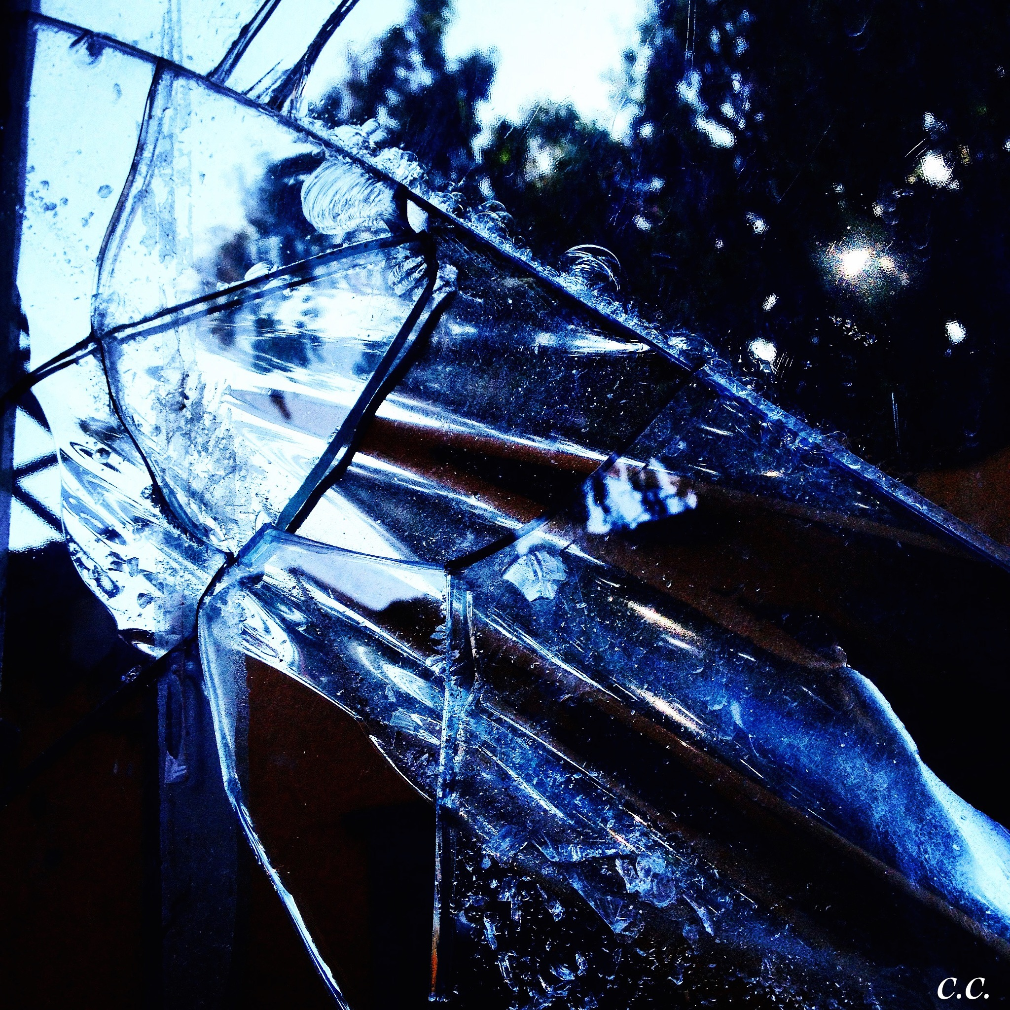 Éclat by Constance Chmld