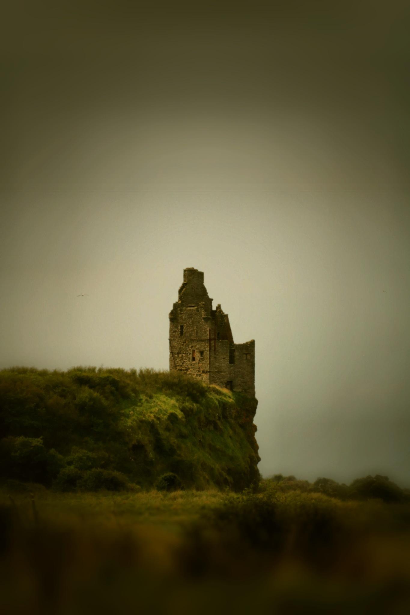 Greenan Castle by Peter Brown