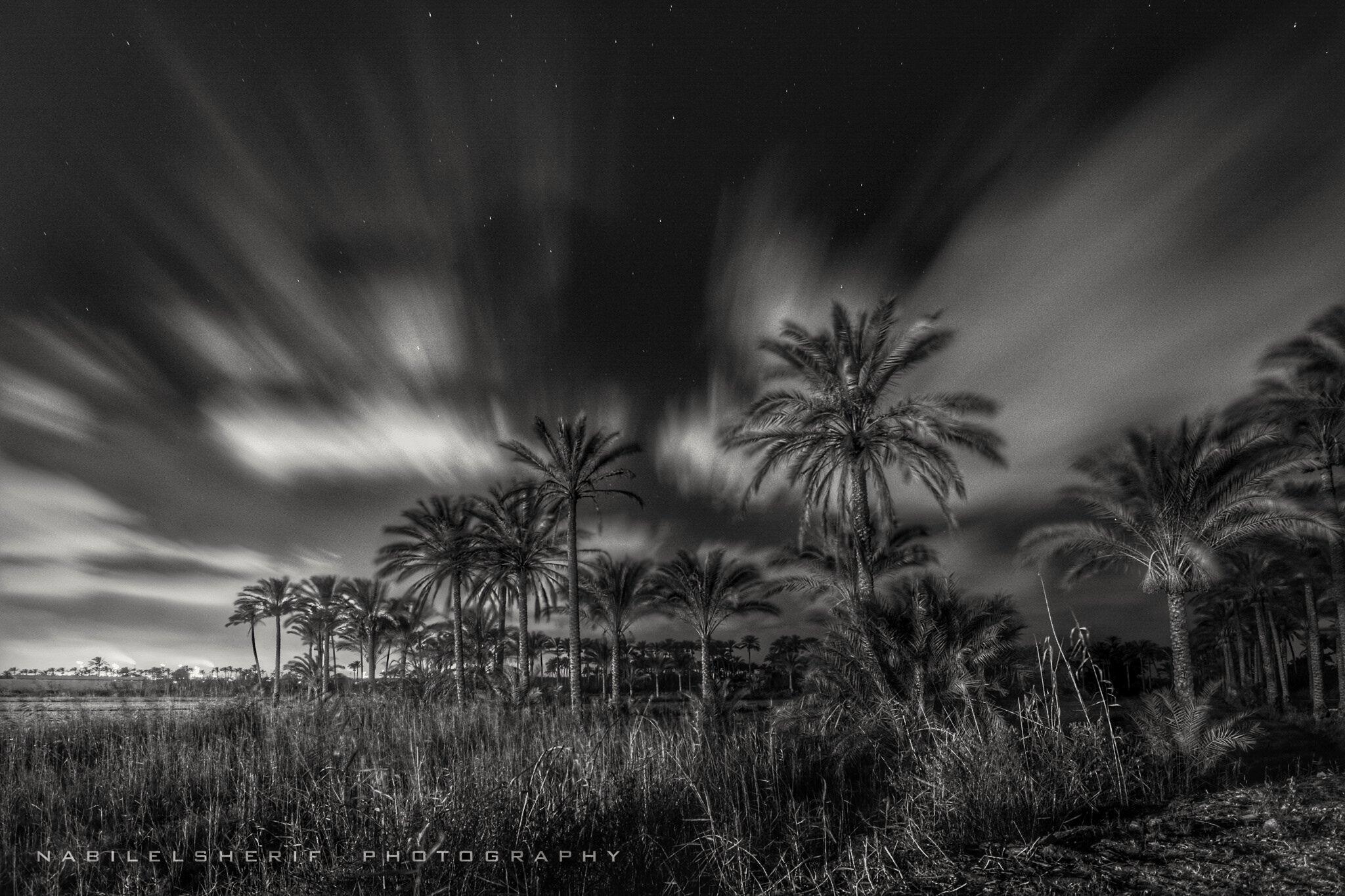 magic of night by Nabil Elsherif