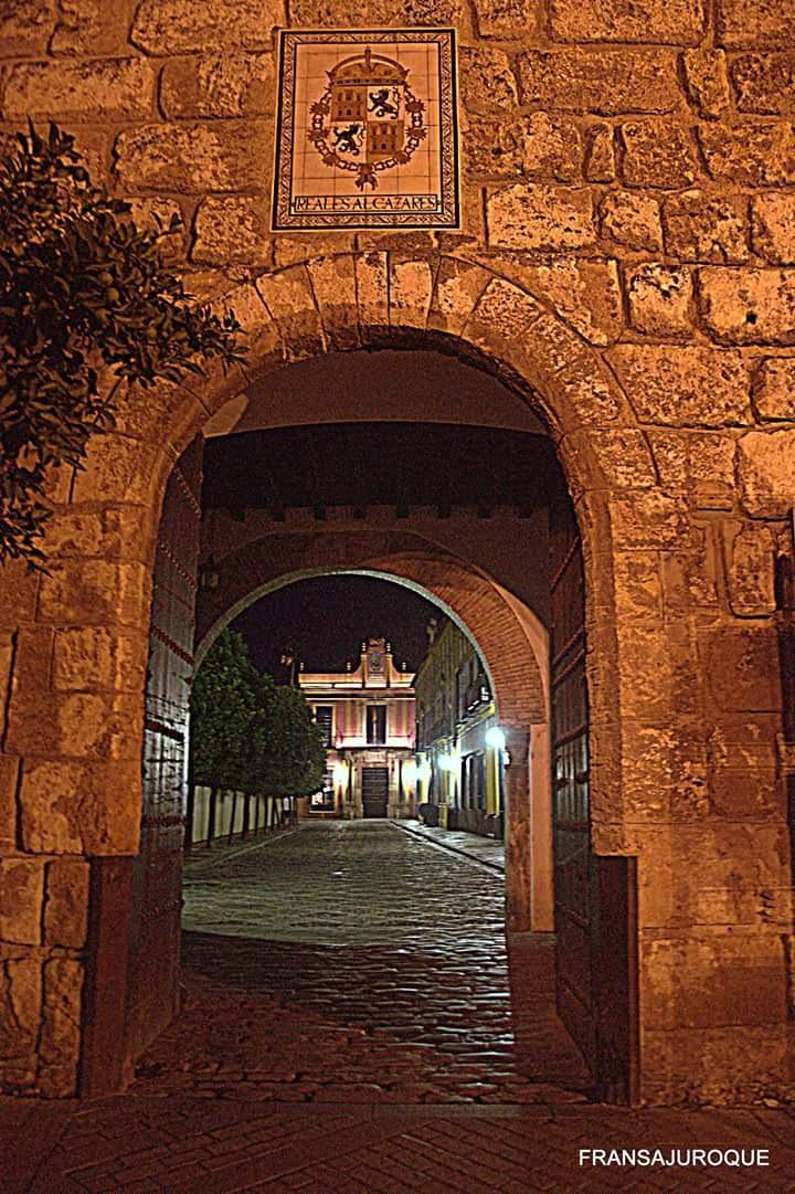 Untitled by Francisco J. Sánchez-Jurado Rodríguez de Quesada