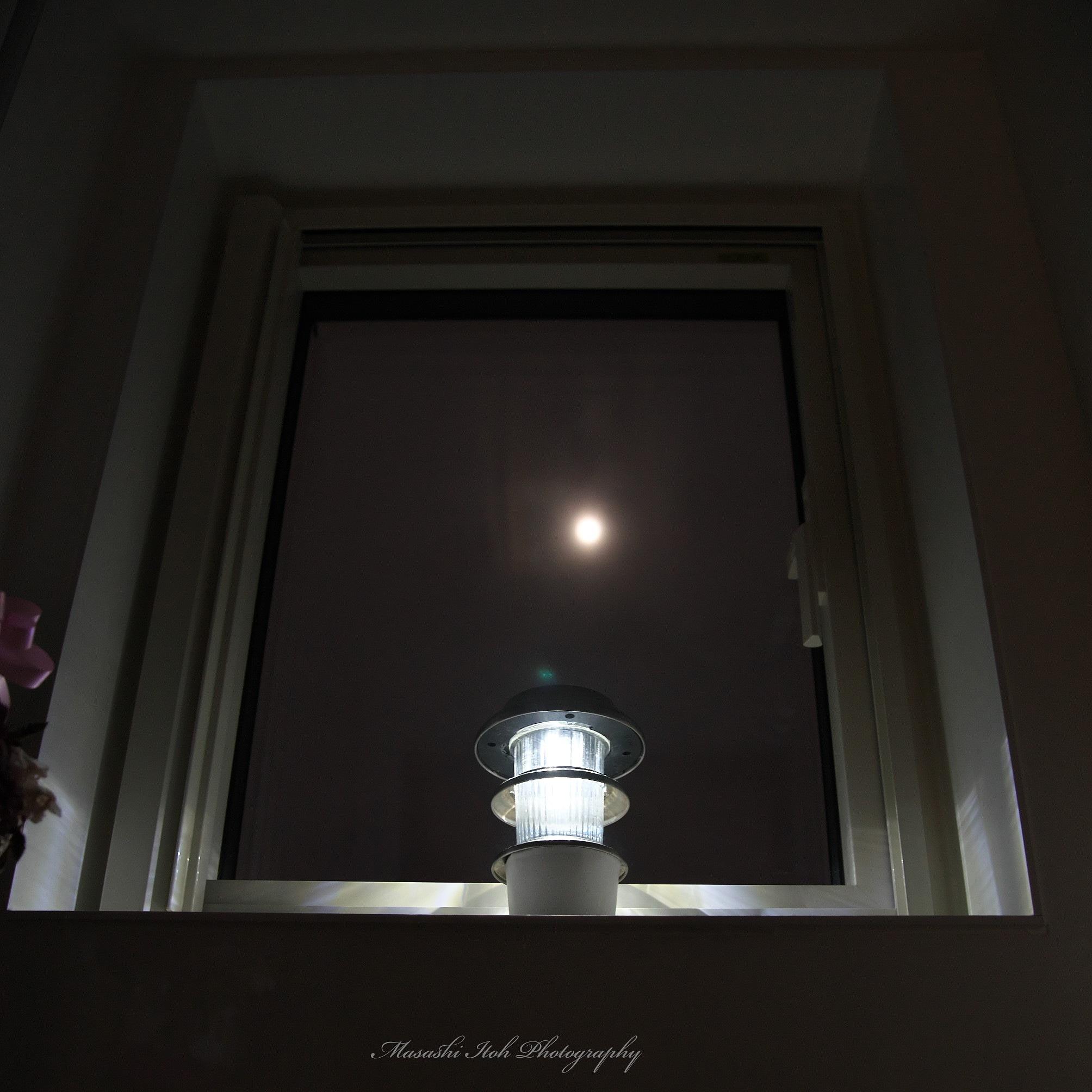 Lights by Masashi Itoh