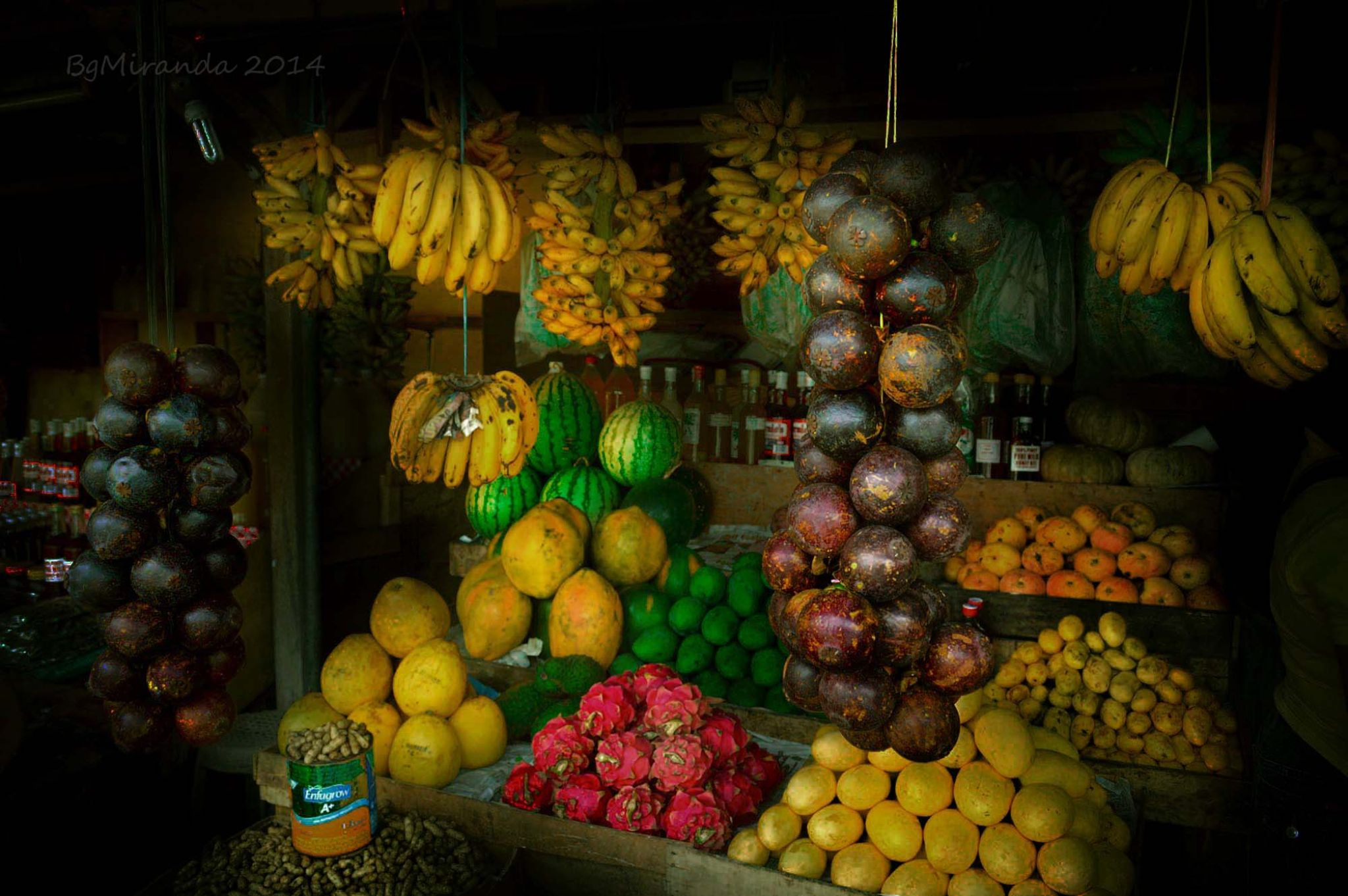 Tropical Fruits of the Philippines by Bernard Miranda