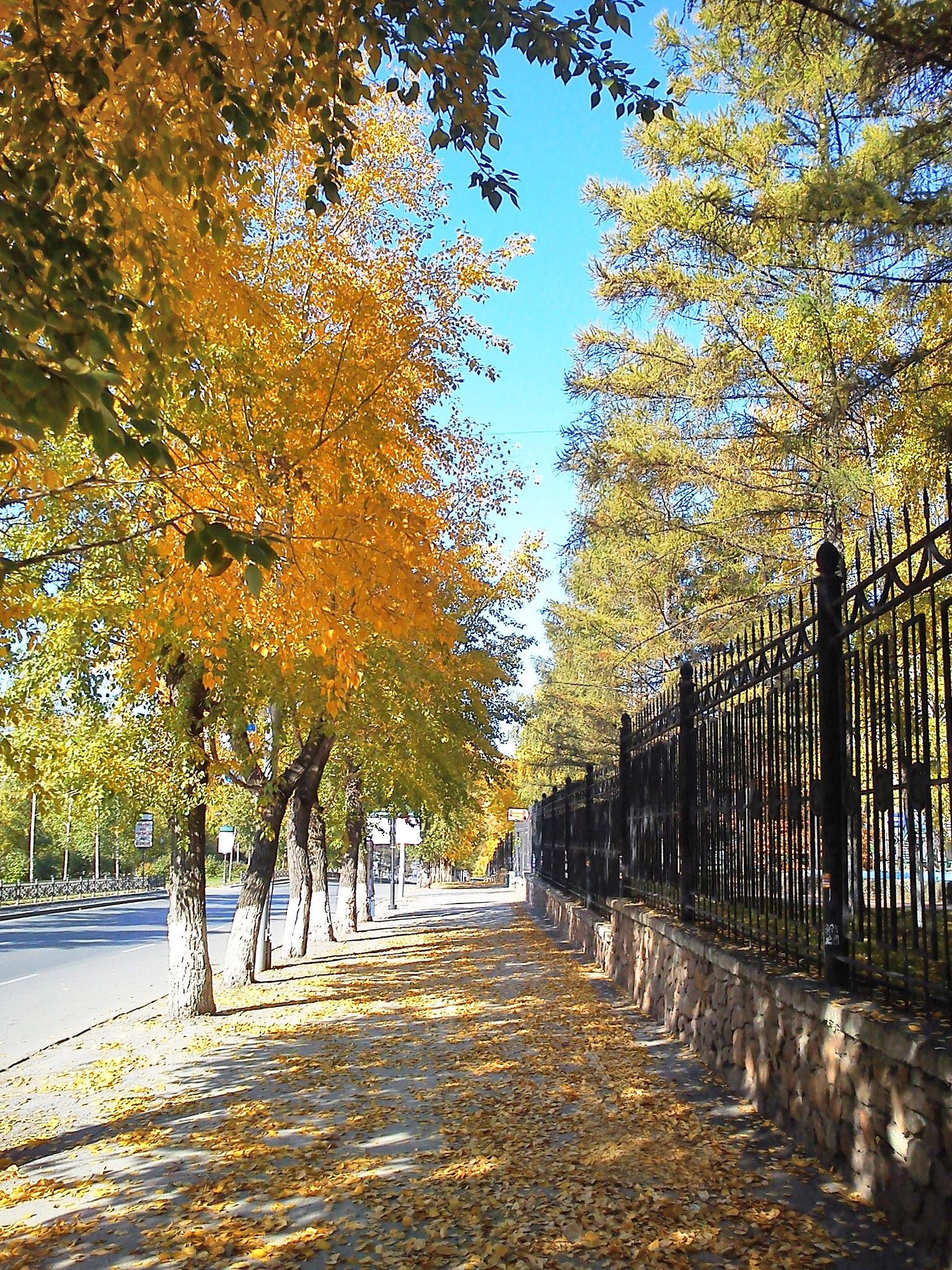 Sunny Autumn by Lightspear