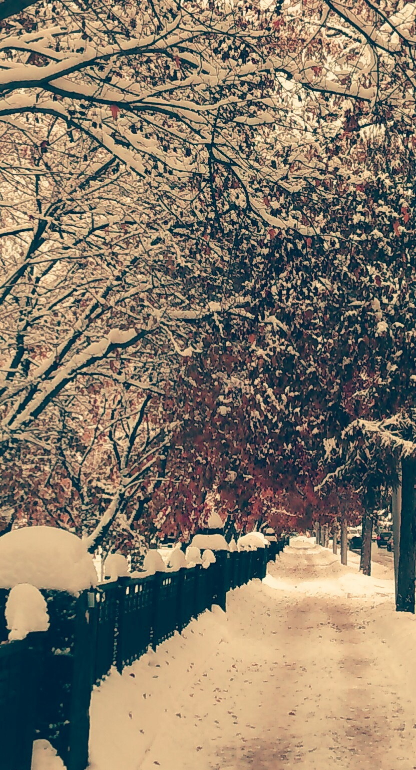 Snowfall by Lightspear