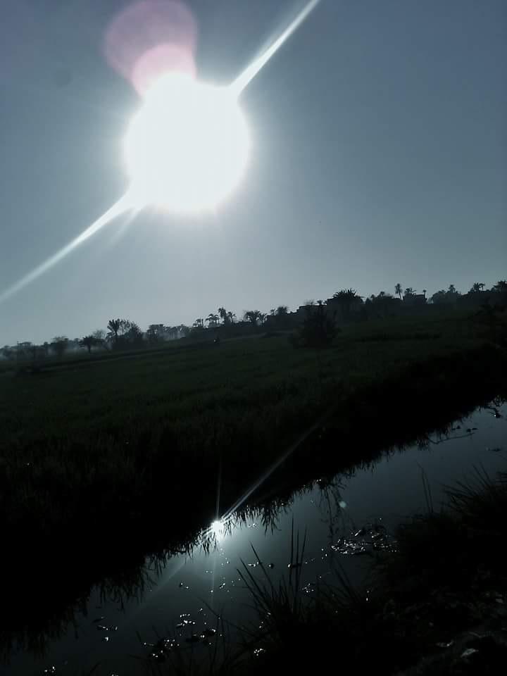 sun by Shawky Ahmed