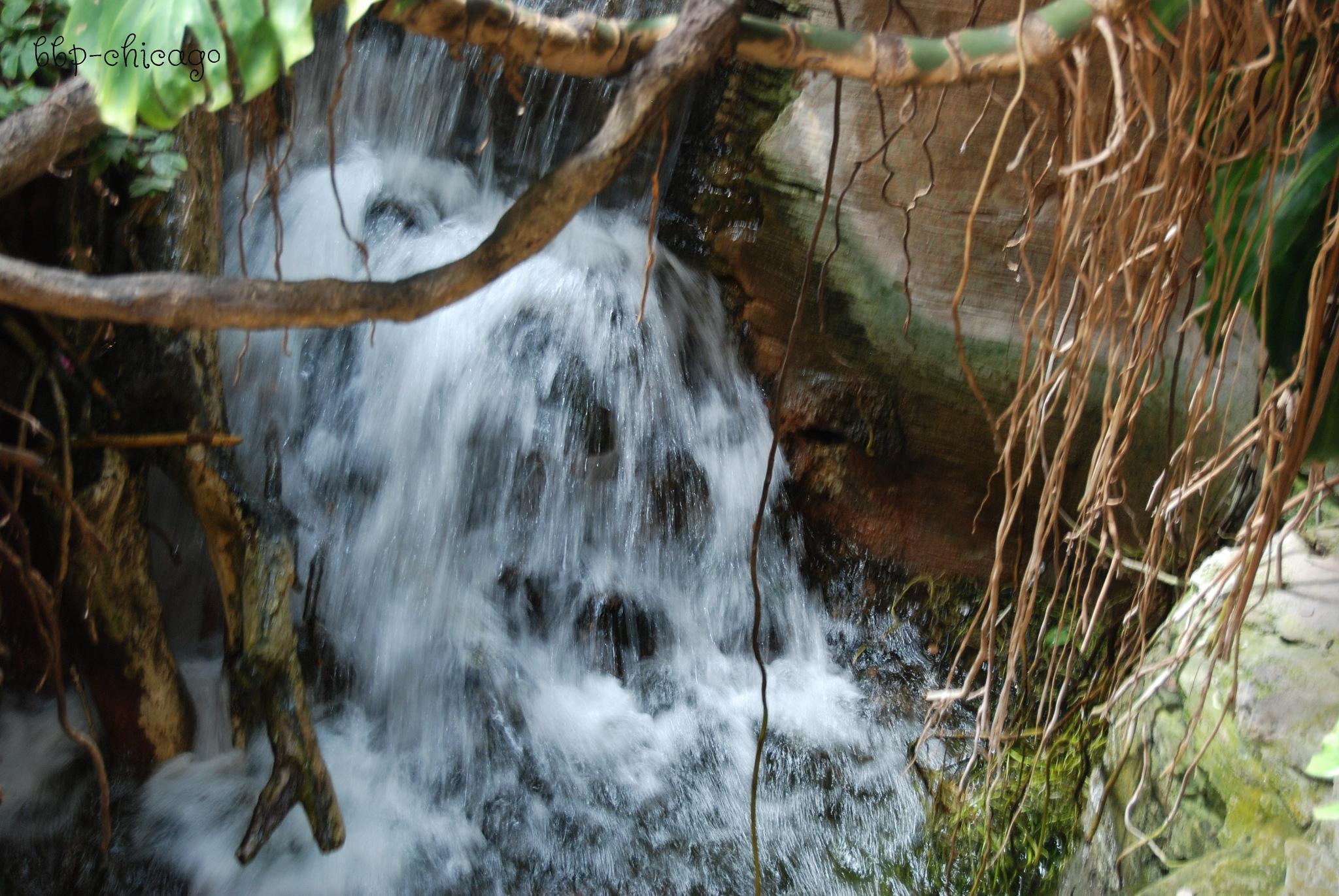 Secret Waterfall by Michele