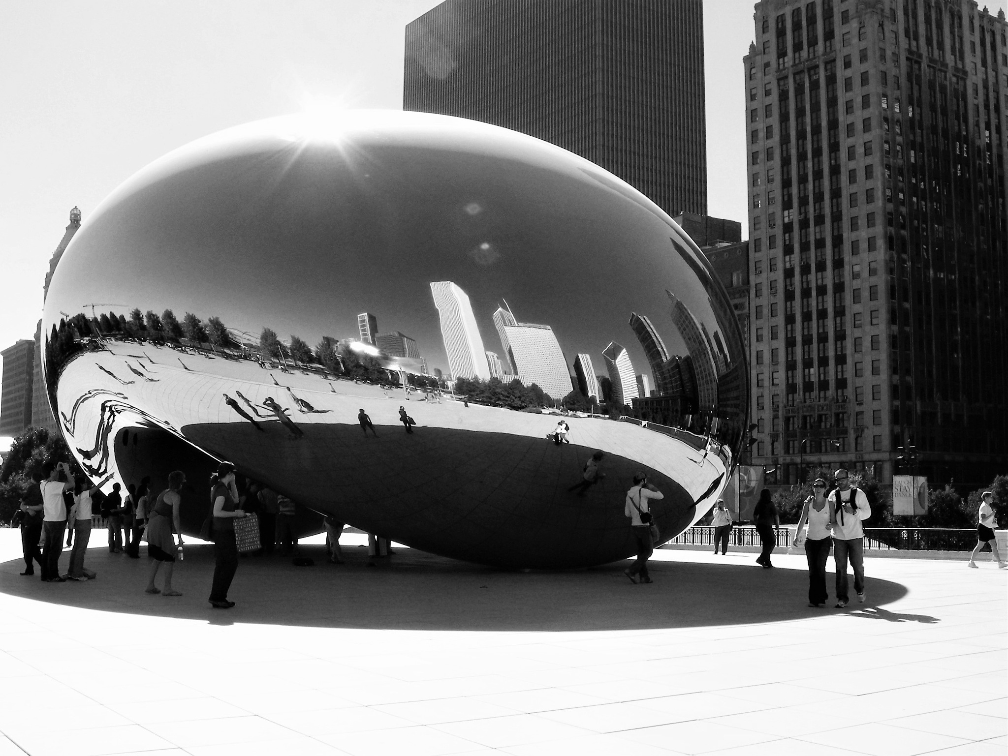 Meet the Bean-Black and white by Michele