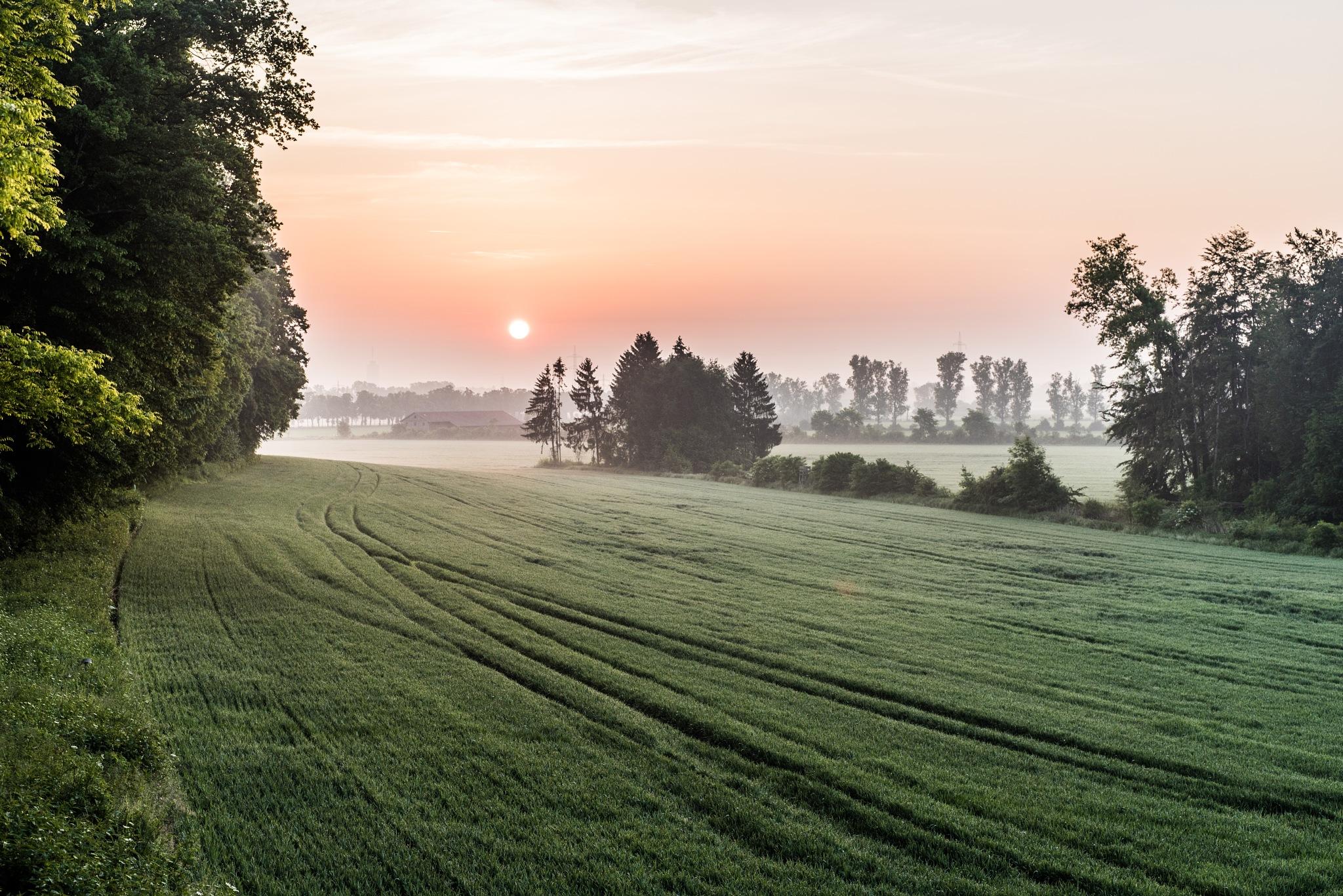 Morning - Augsburg.Germany by designgarten