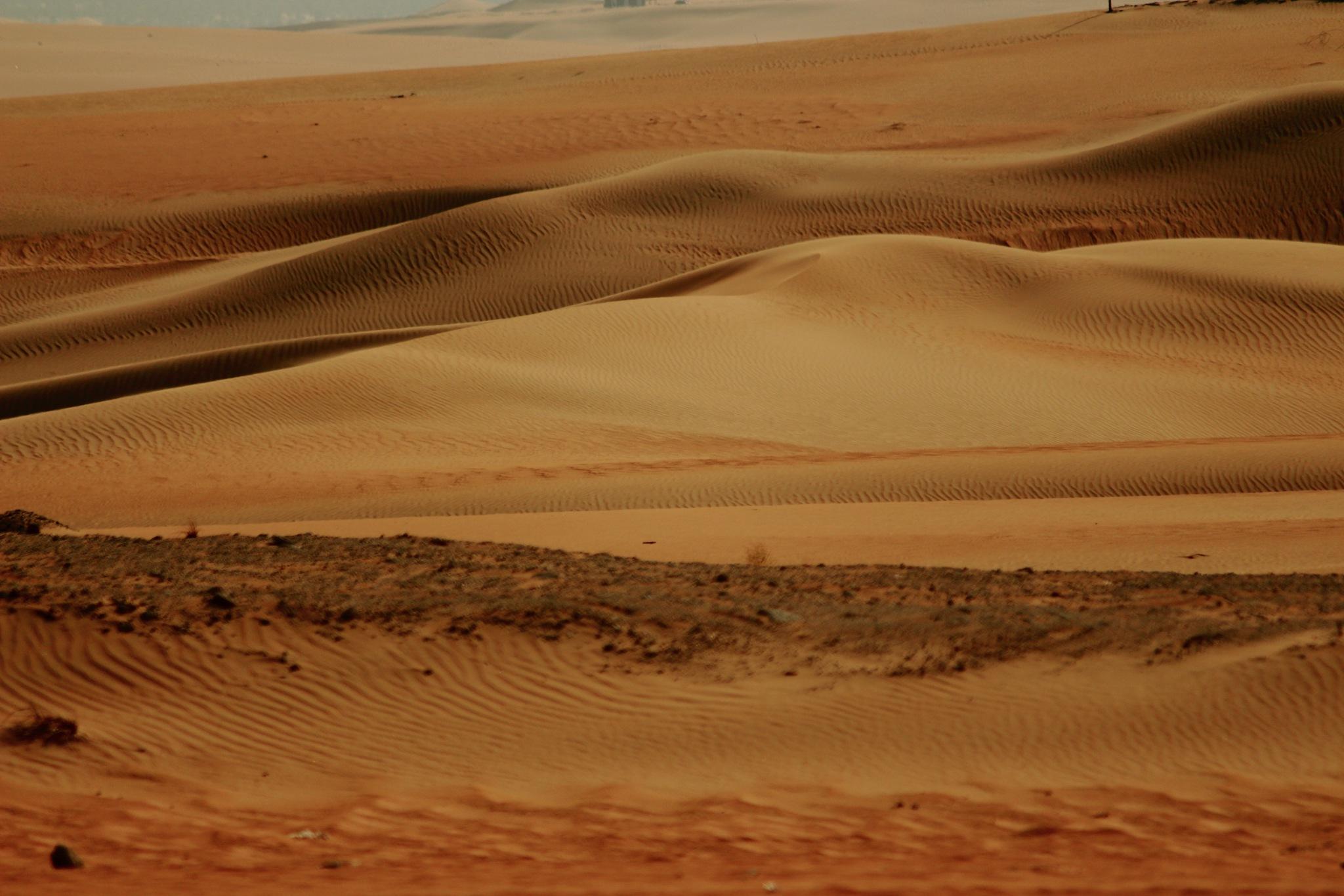 Sand Dunes by Sonans