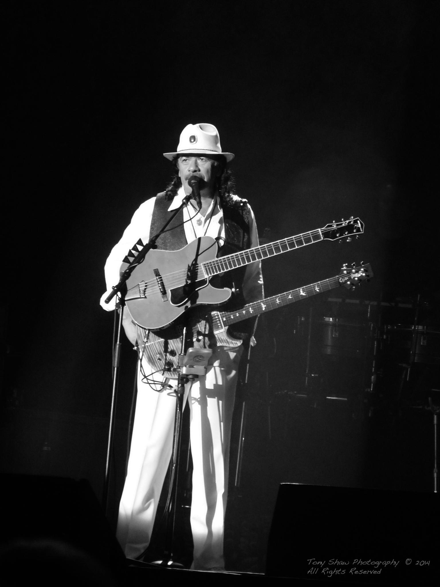 Carlos Santana by Tony Shaw