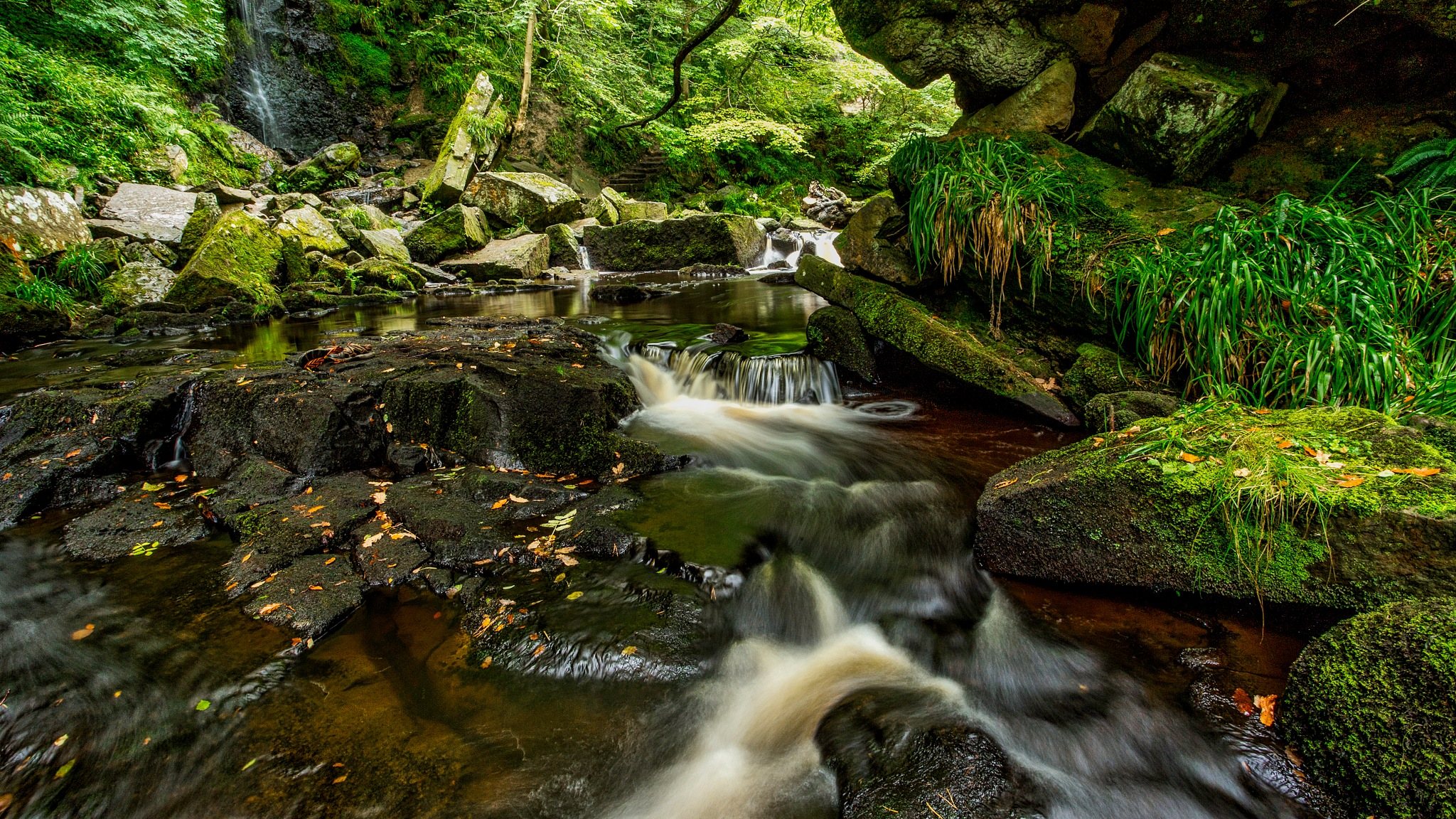 West Beck by Tony Shaw