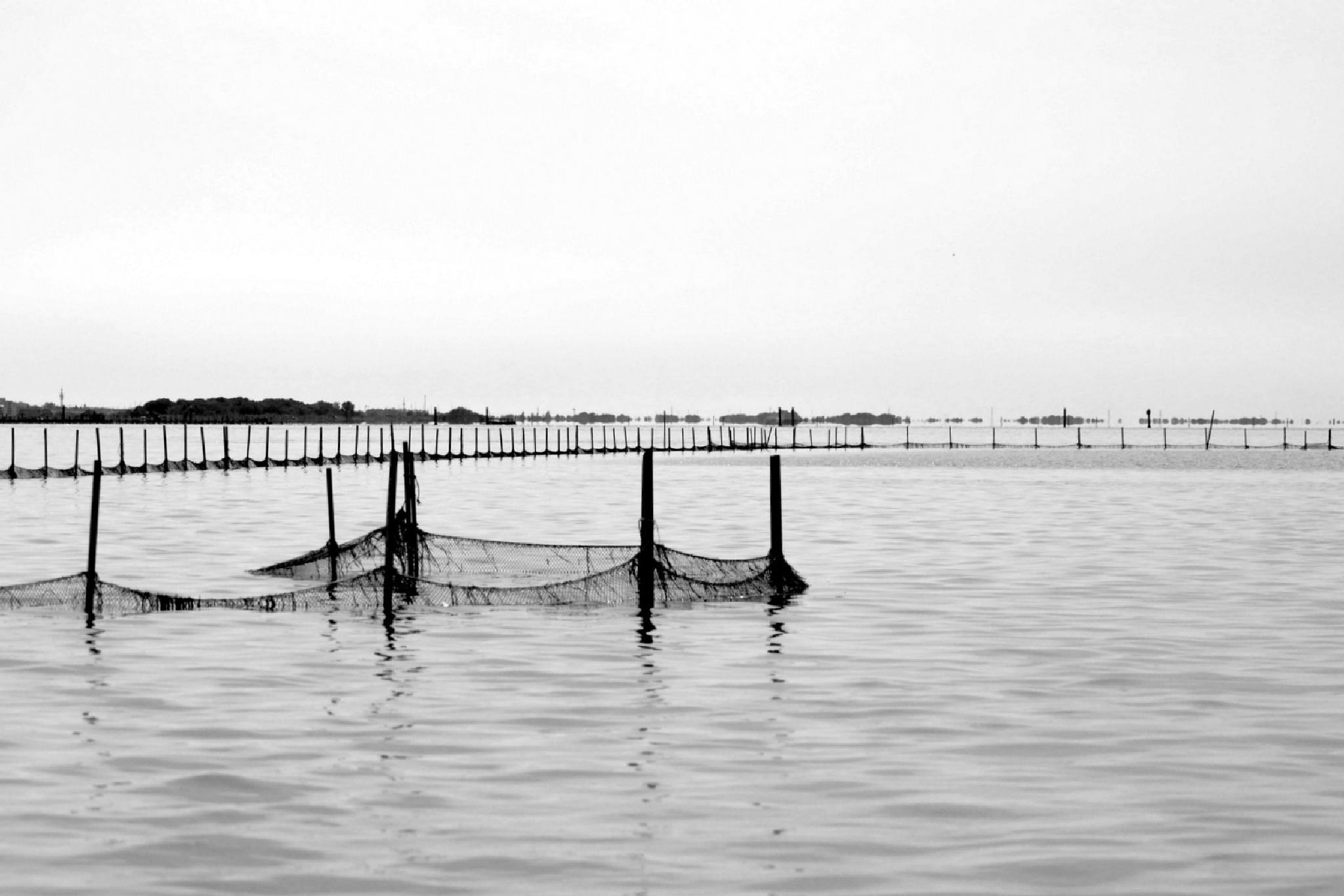 reti di pescatori by Franco Gardiman