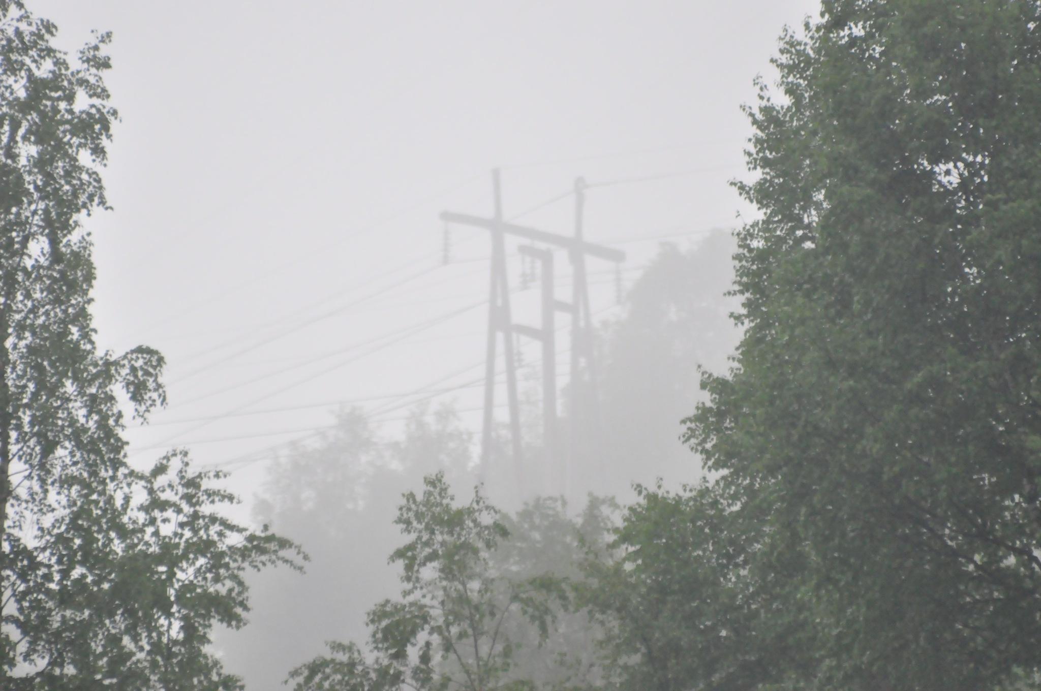 powerlines blured in morning fog by Dag Olav Øverland