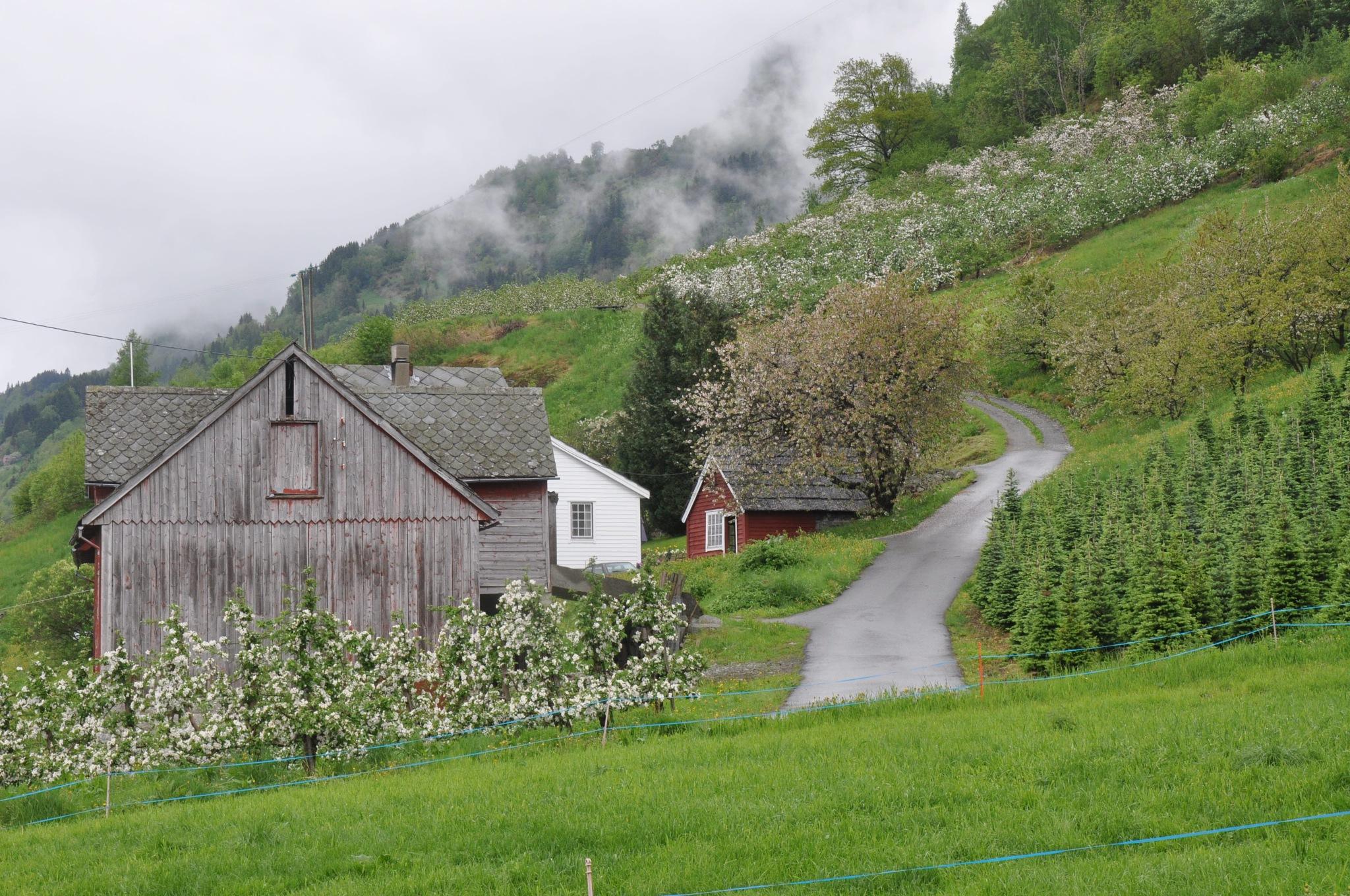 Untitled by Dag Olav Øverland