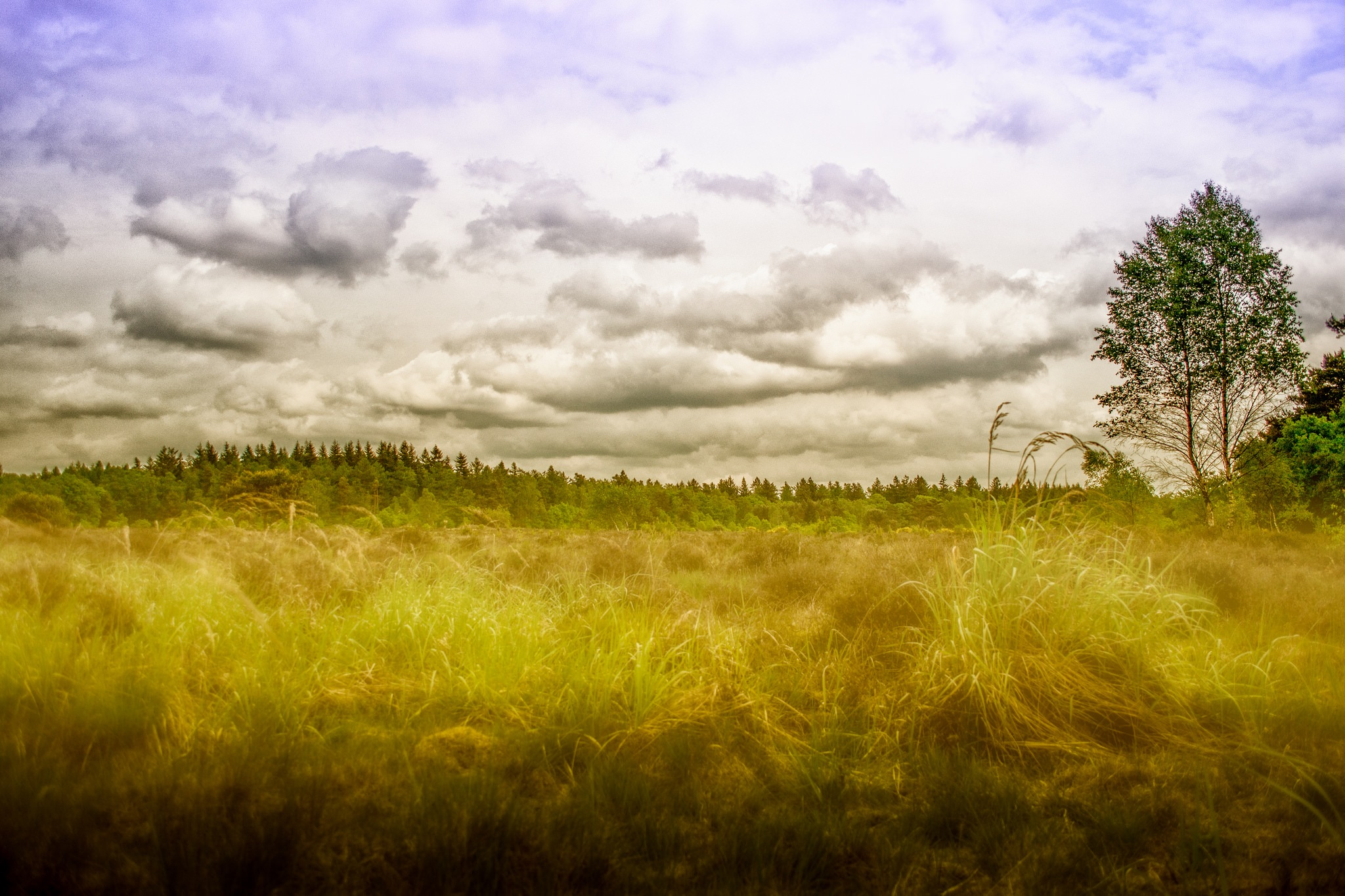 landscape by DannyGeveling
