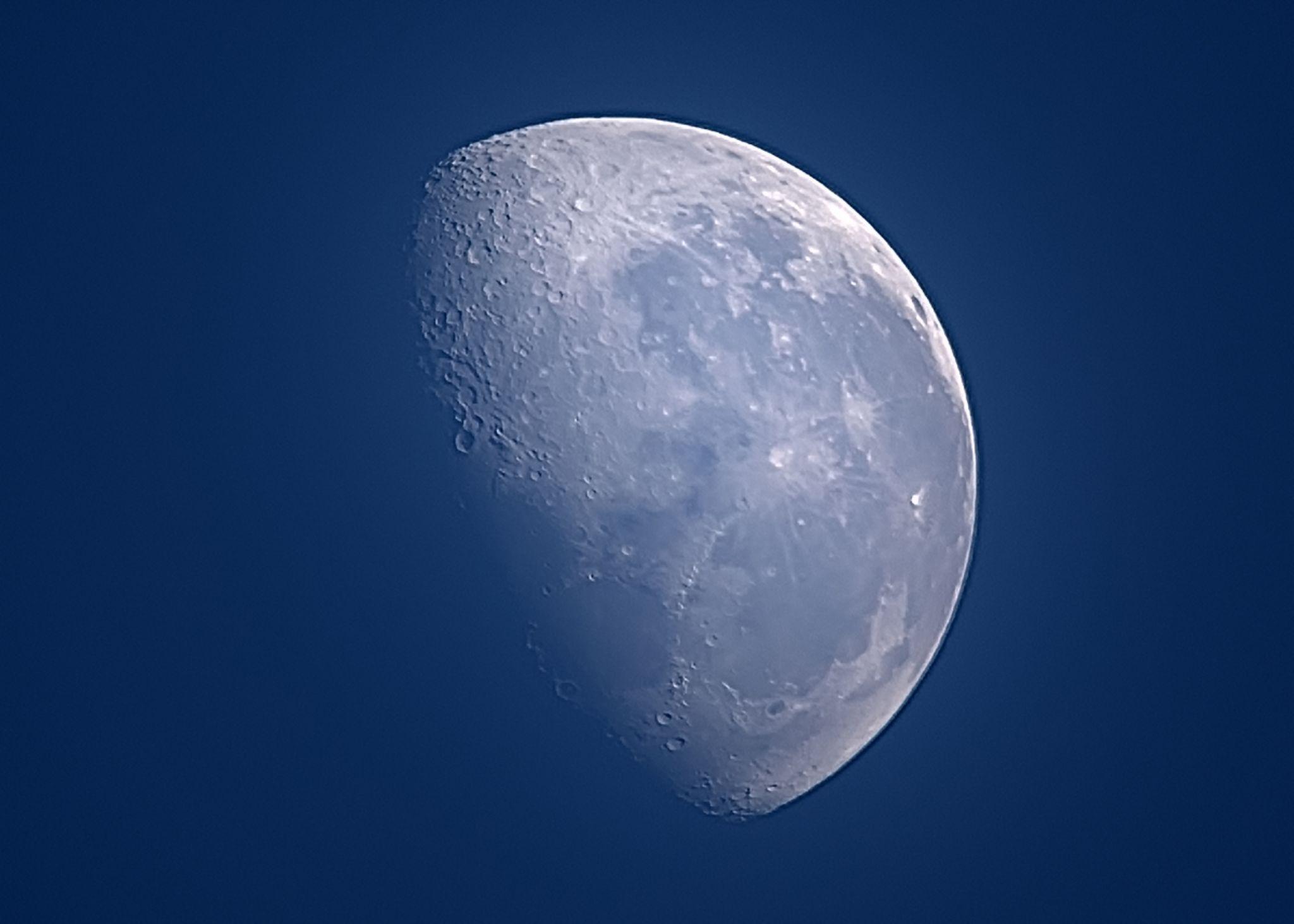 Blue Moon,close up by lendames