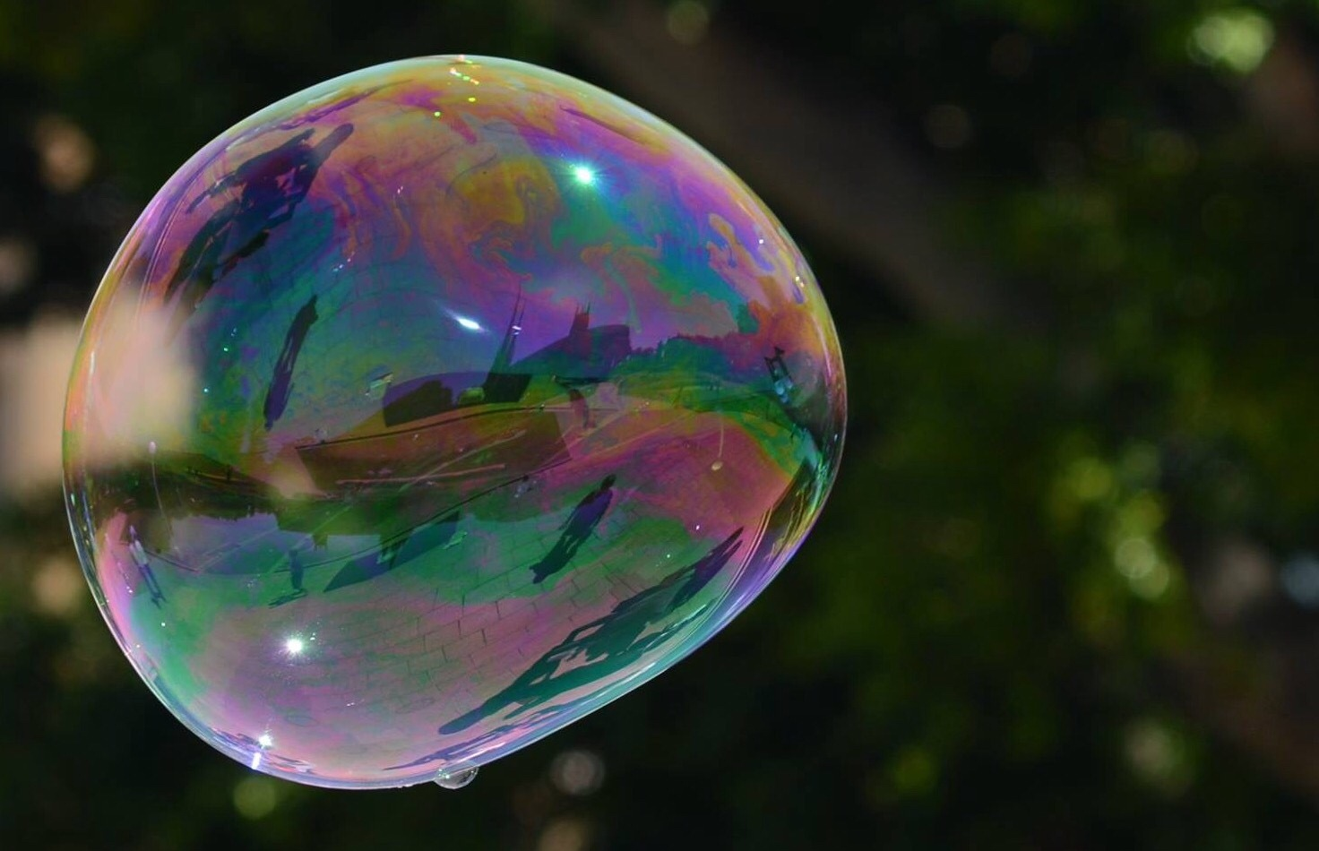 Rainbow reflection by Veronica Brown
