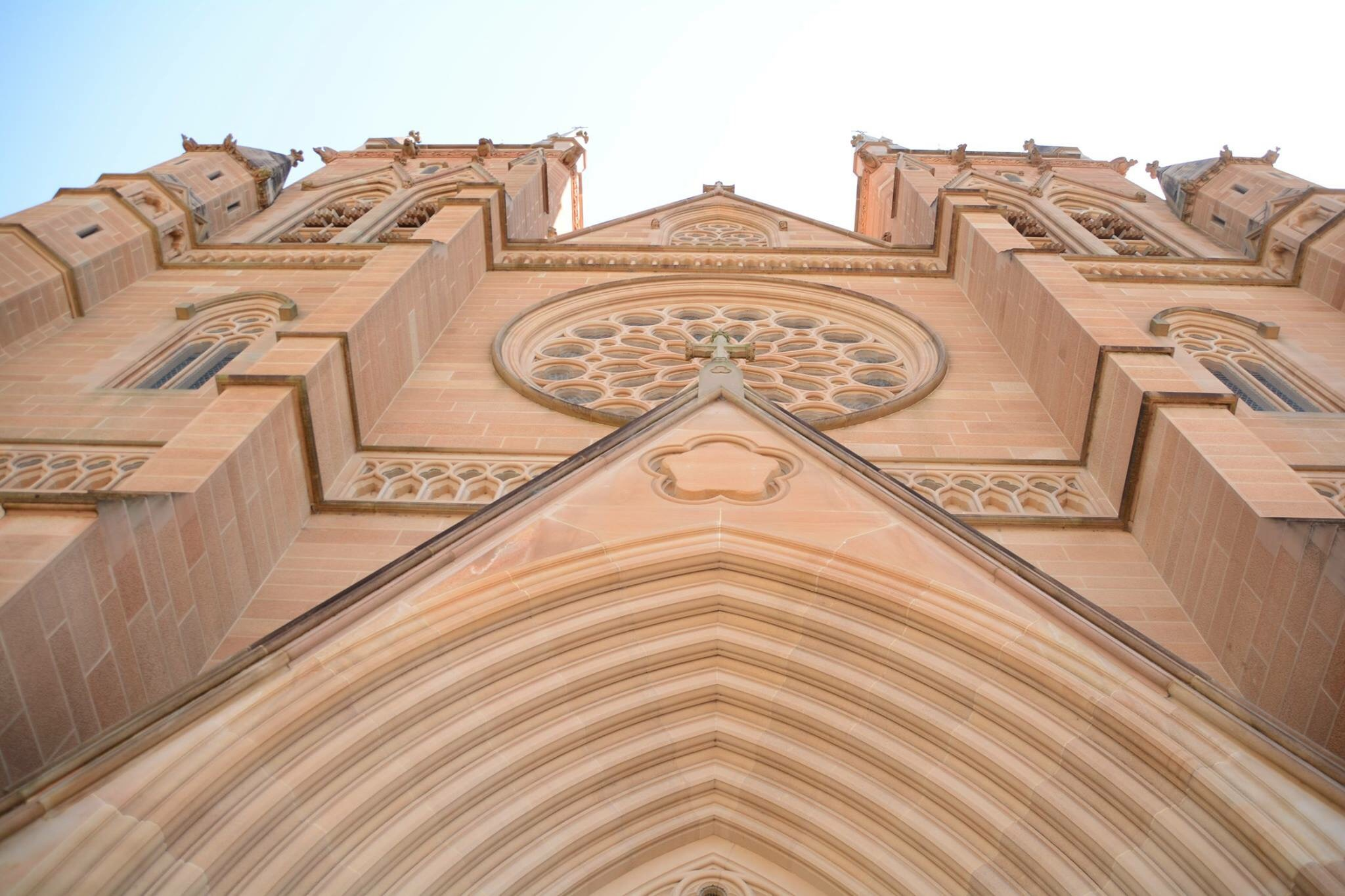 Looking to the heavens at St Mary's Cathedral by Veronica Brown