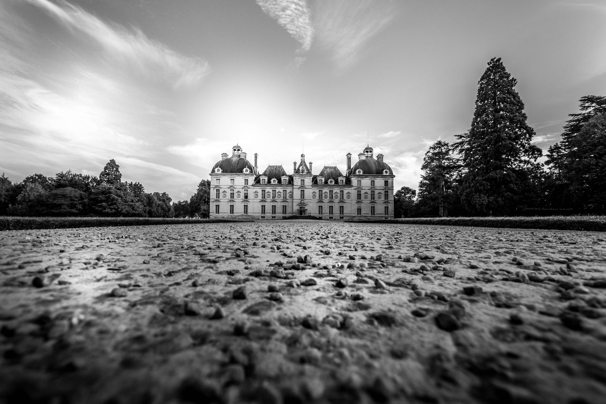 la vie de château  by Sachasud