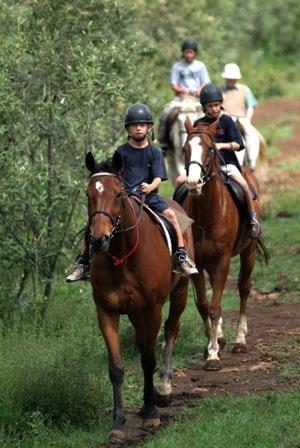 Kenya Horse Riding Safaris  by buymoreadventures