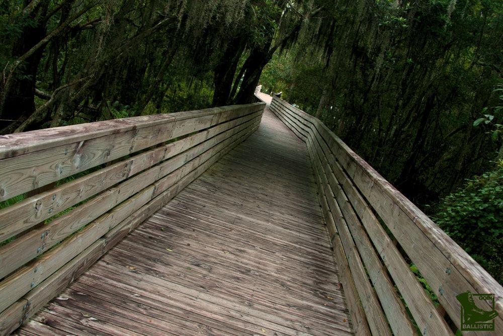 Bridge by GoinBallistic