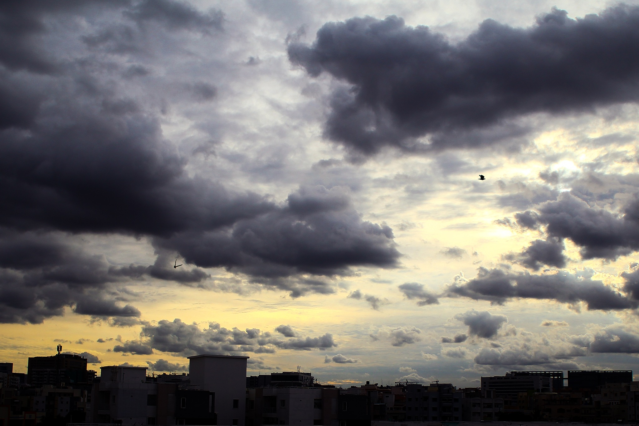 Heavy Clouds by Alok Bhoi