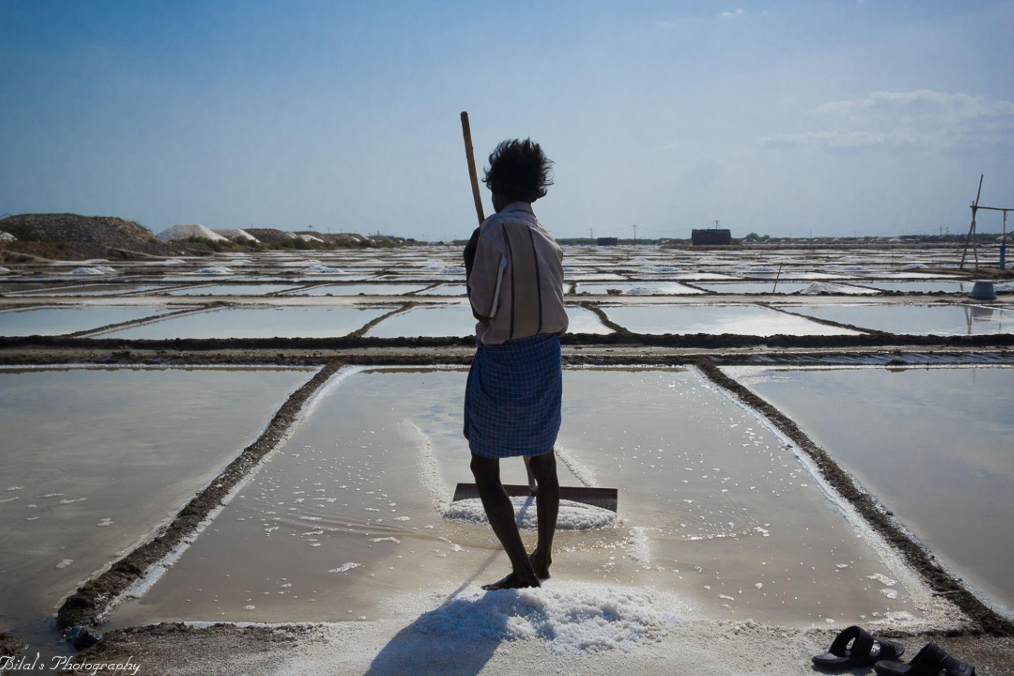 Salt Worker, Vedaranyam by bilal05