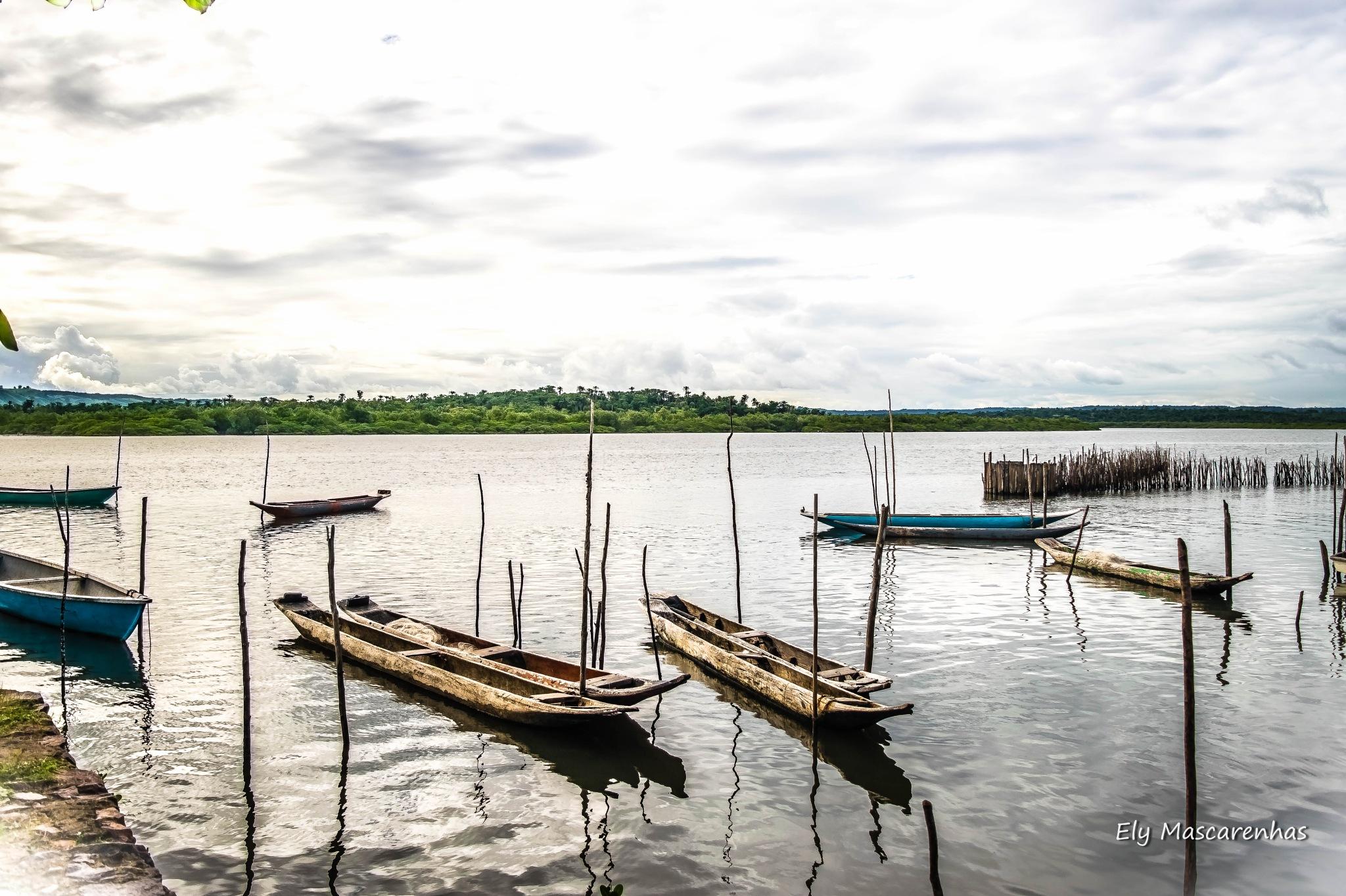 Canoas  by Ely Mascarenhas