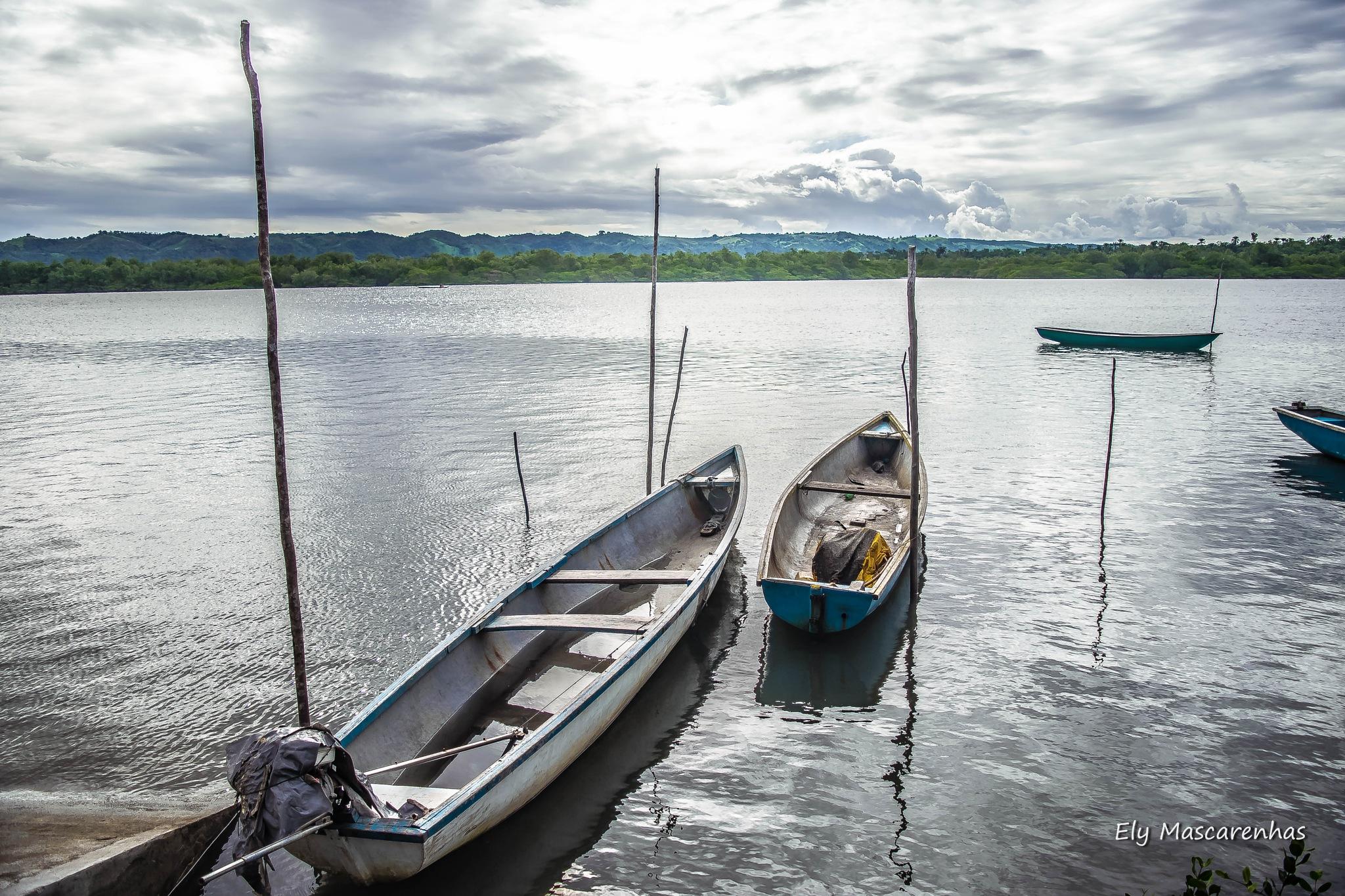 Mar prateado by Ely Mascarenhas