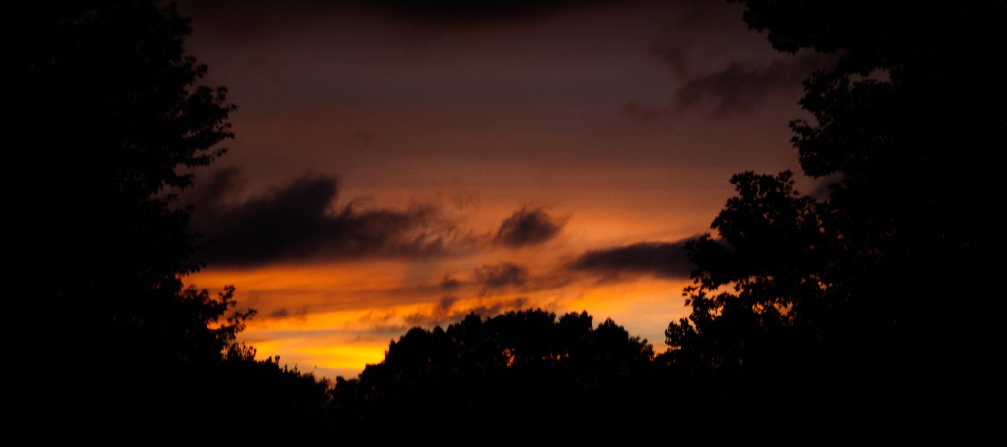 Sunset by Mercedes Tortat