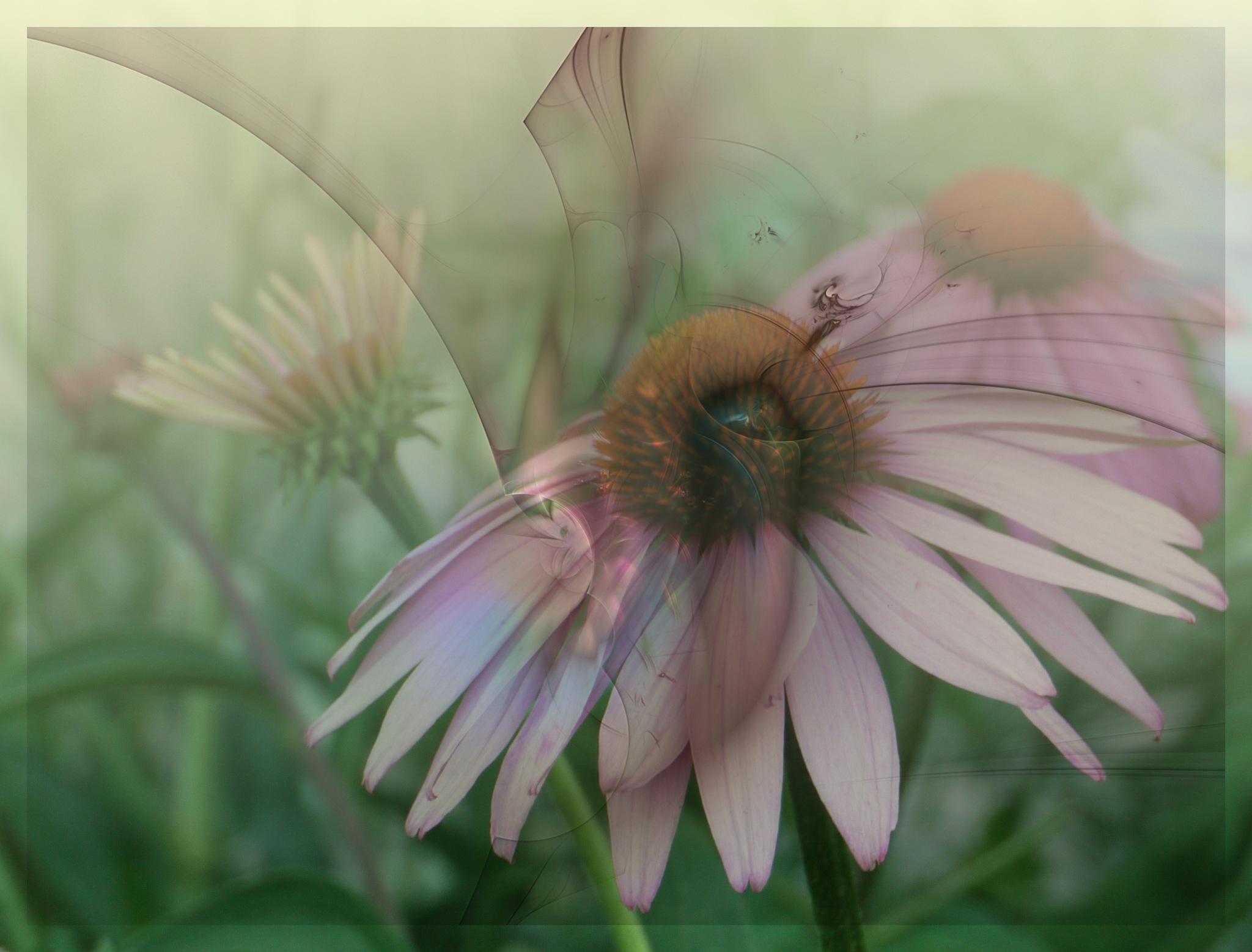 springlike by Brigitta2405