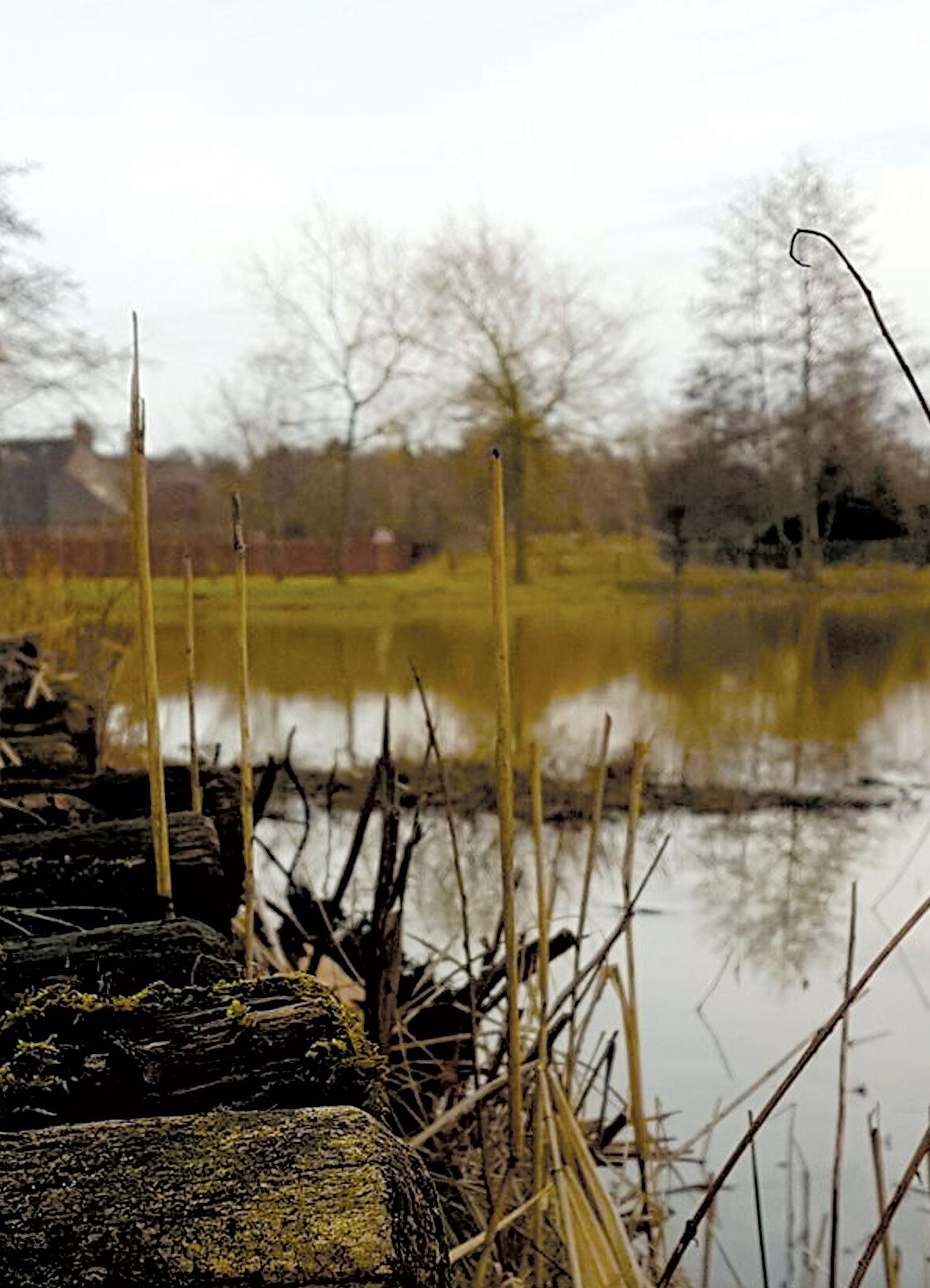 A weekend walk by Yolanda de Fijter