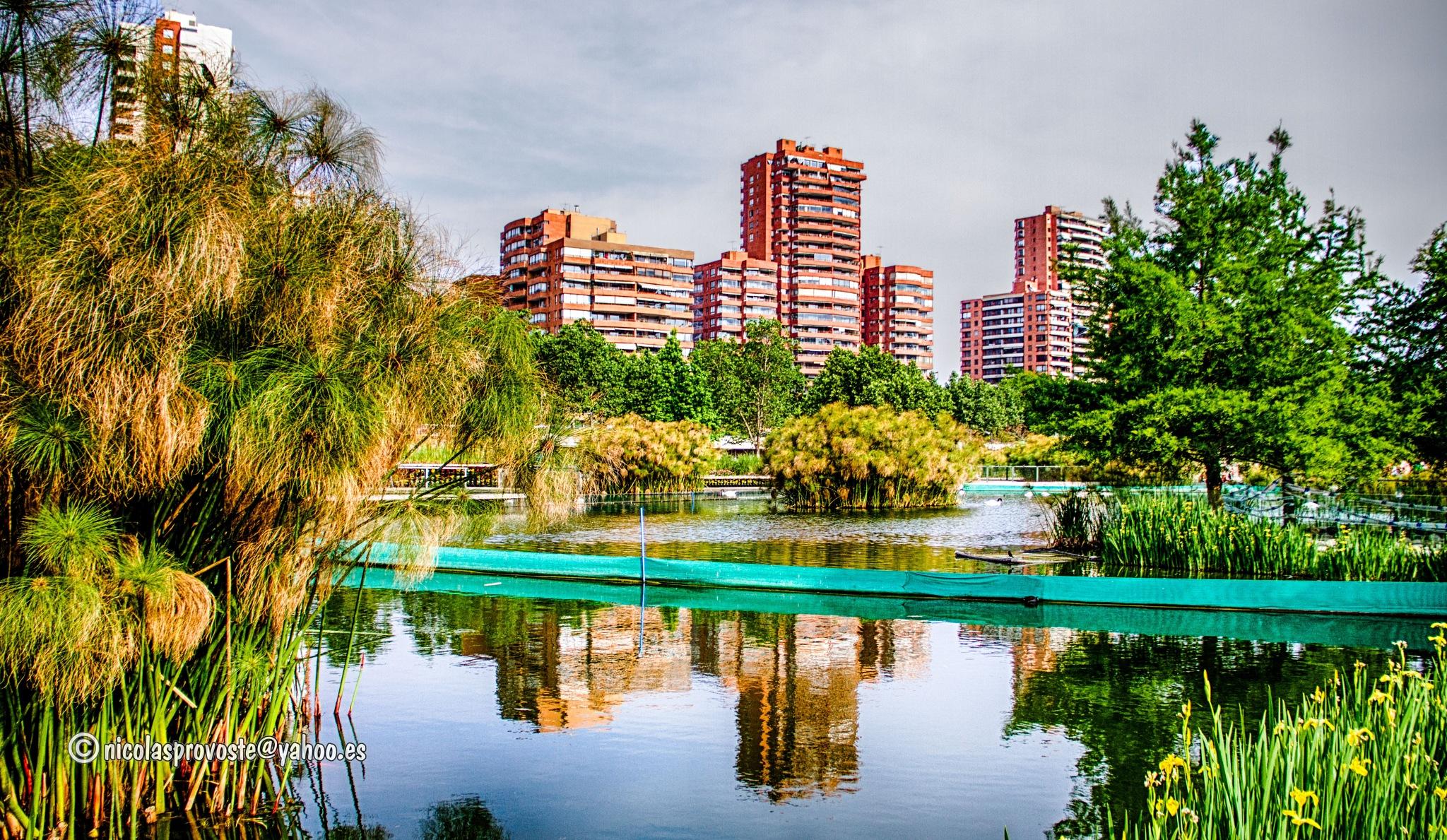 Parque Bicentenario de Santiago by nicolasprovoste