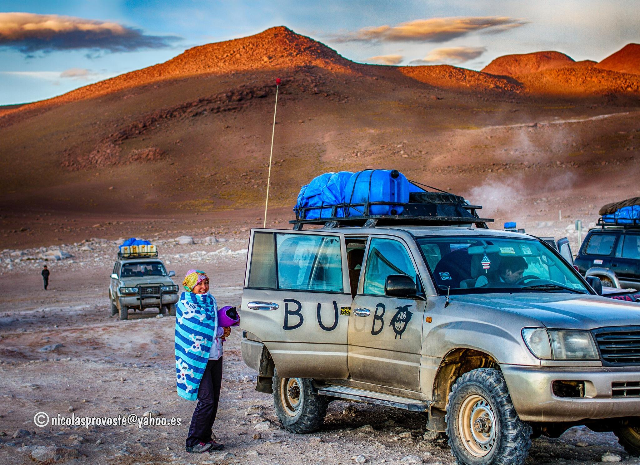 Altiplano boliviano by nicolasprovoste