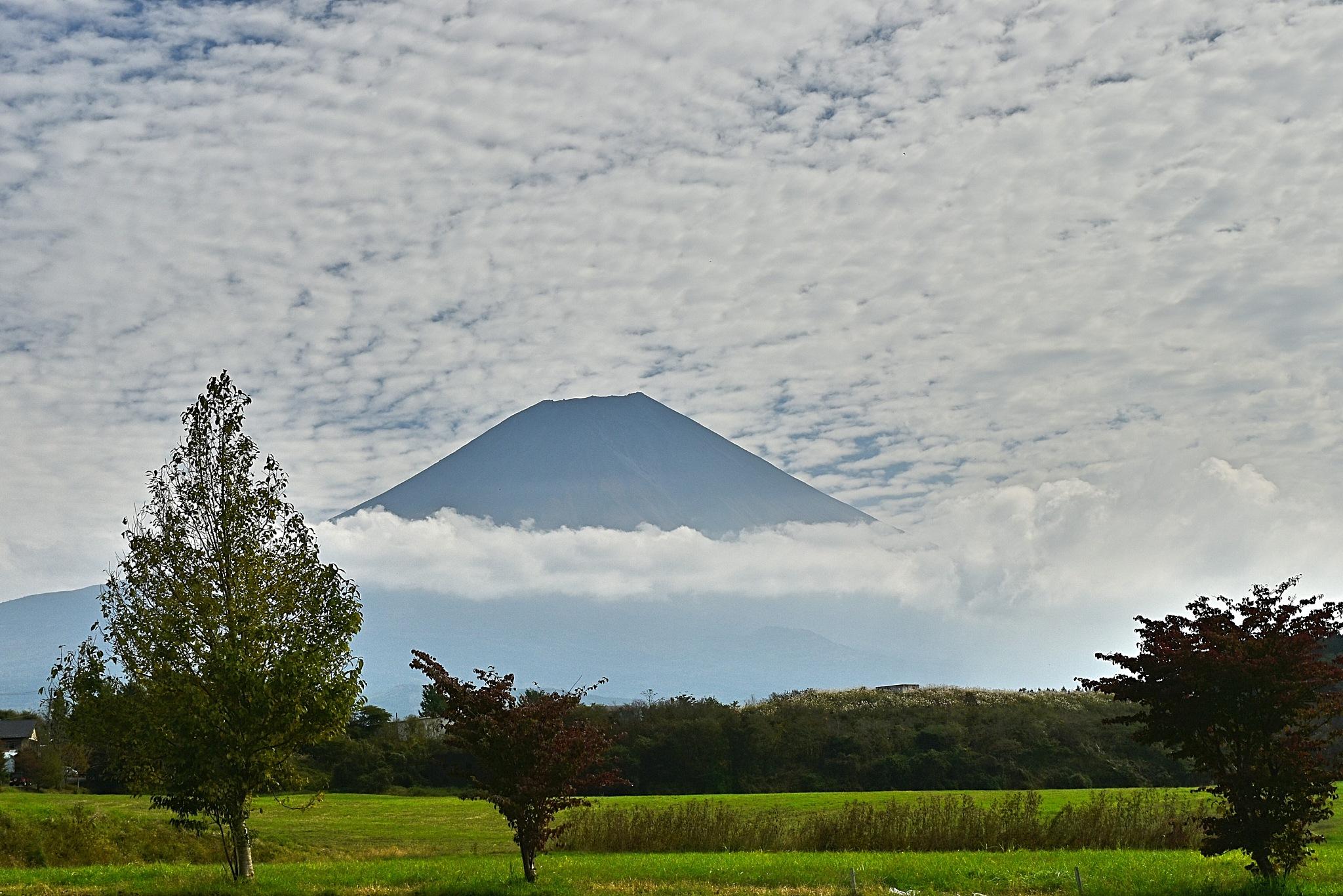 今日の富士山 by kumikoxinye
