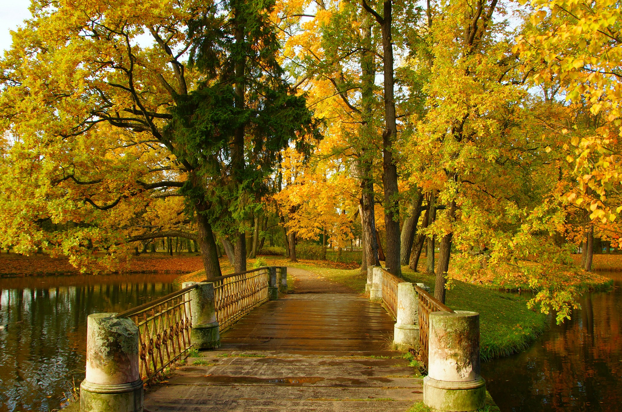 Autumn day  by Sergey Andreevich
