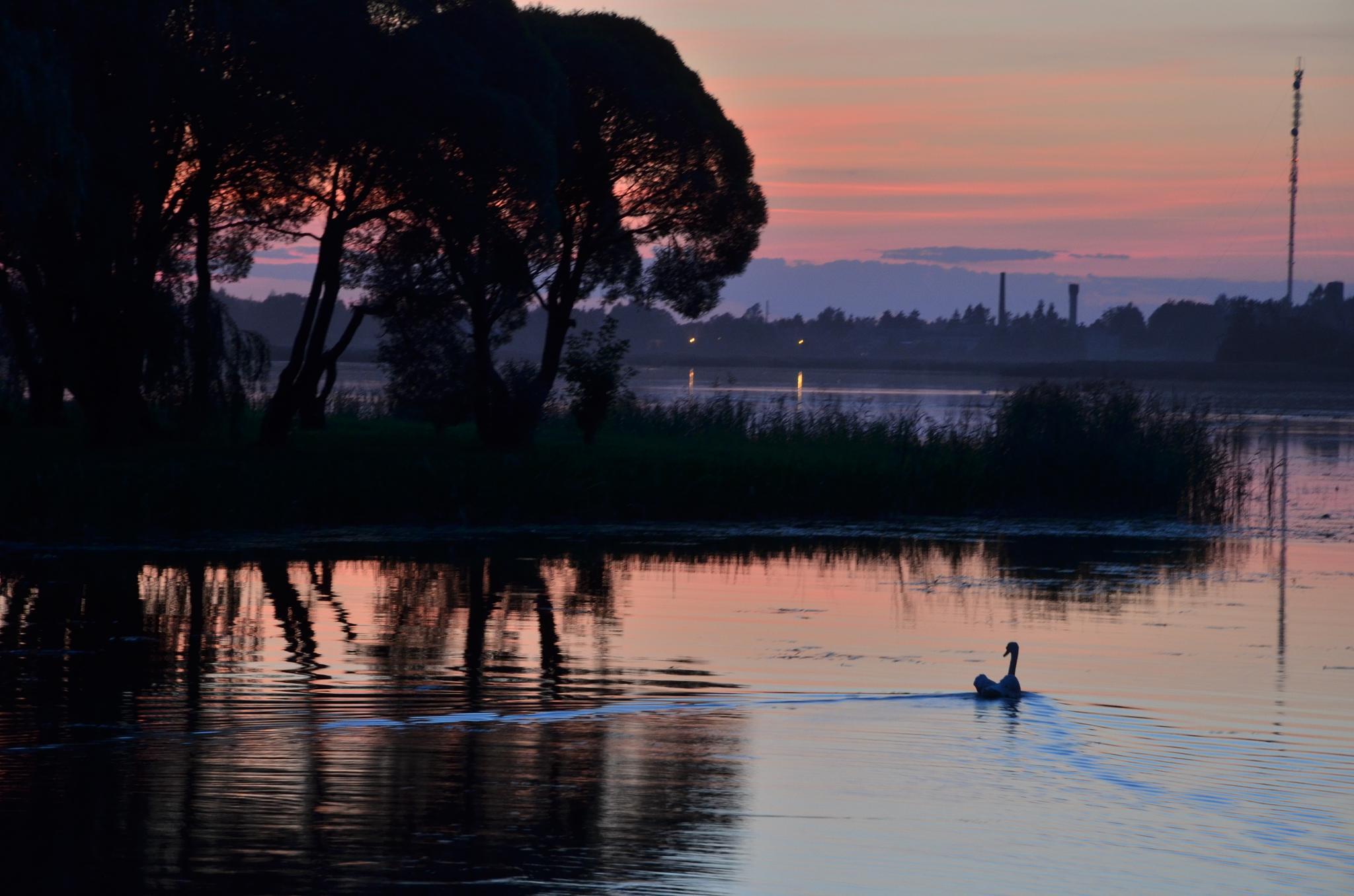Evening lake 2 by Zenonas Meškauskas