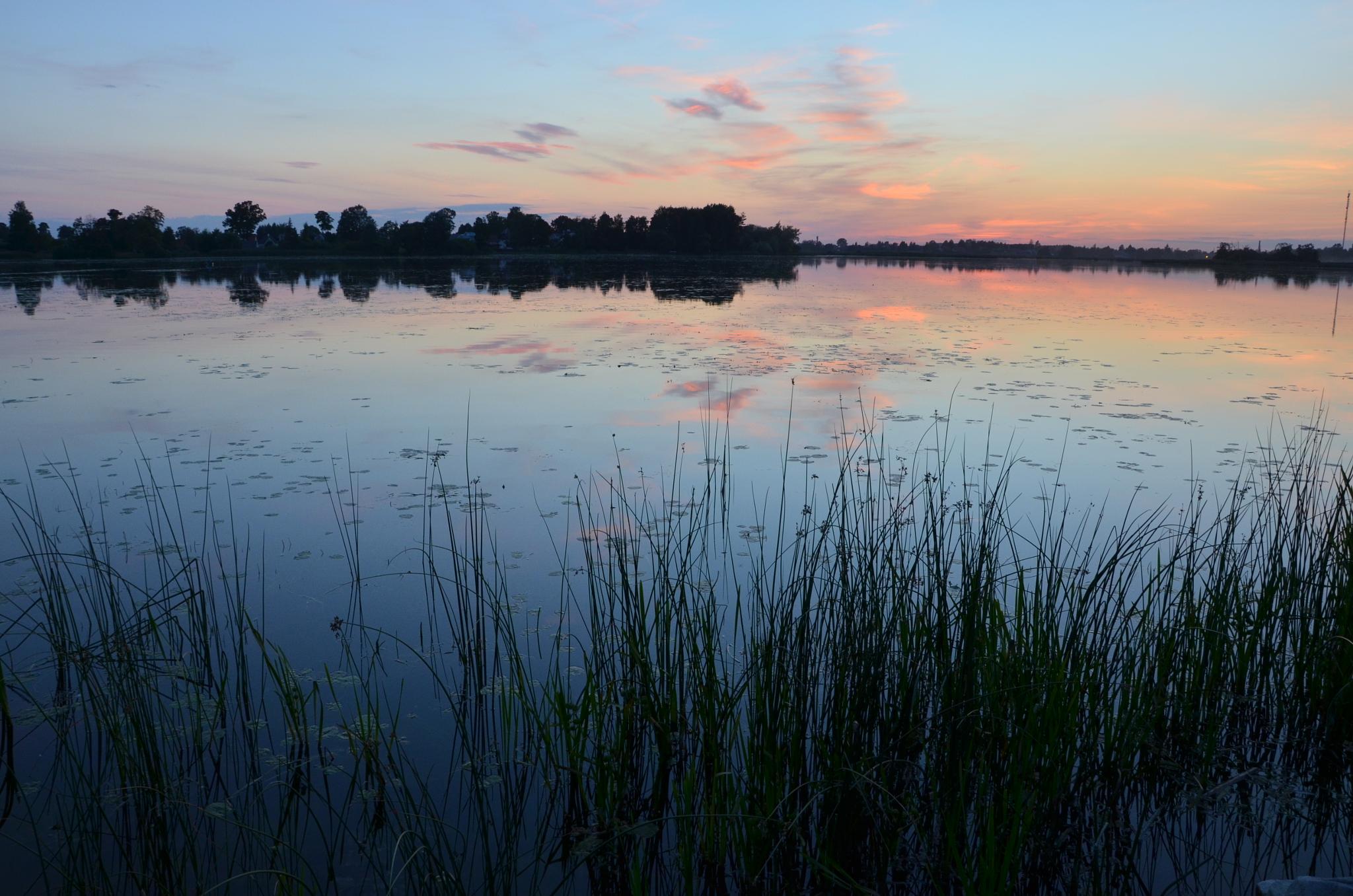 Evening lake 3 by Zenonas Meškauskas