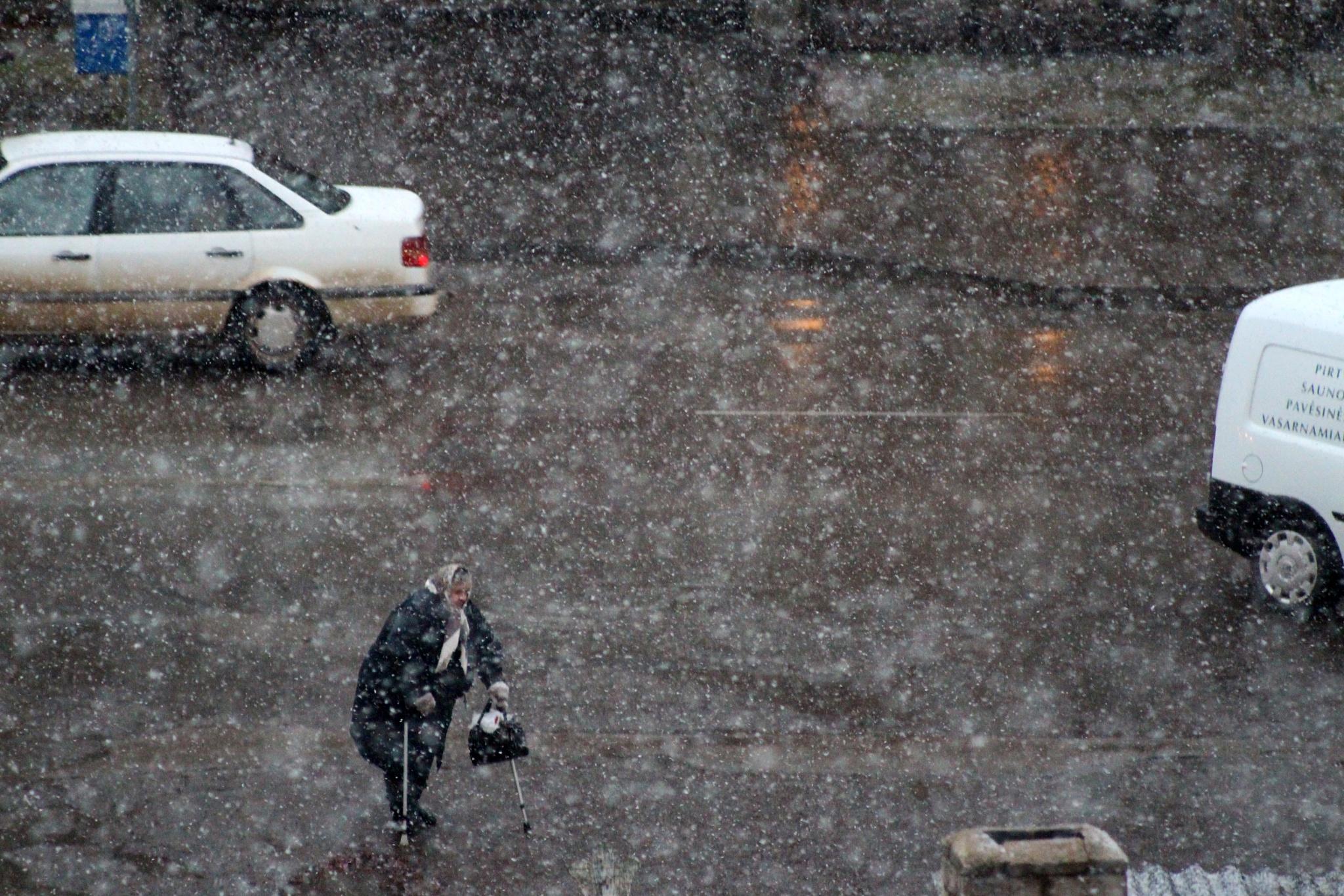 Oh, how long ago it was snowing ...(3) by Zenonas Meškauskas