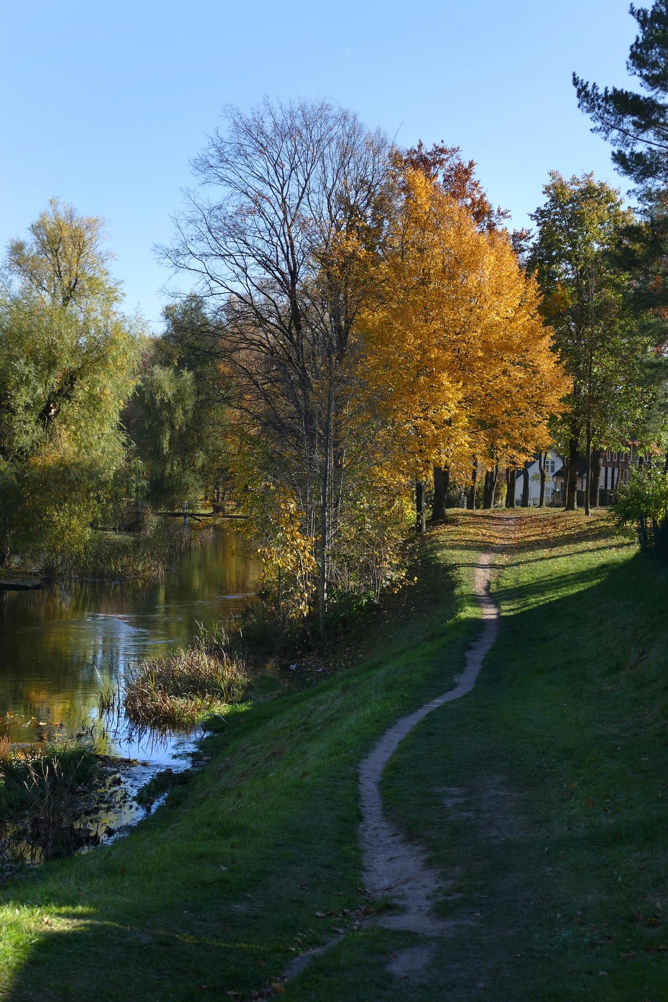 By the river... by Zenonas Meškauskas