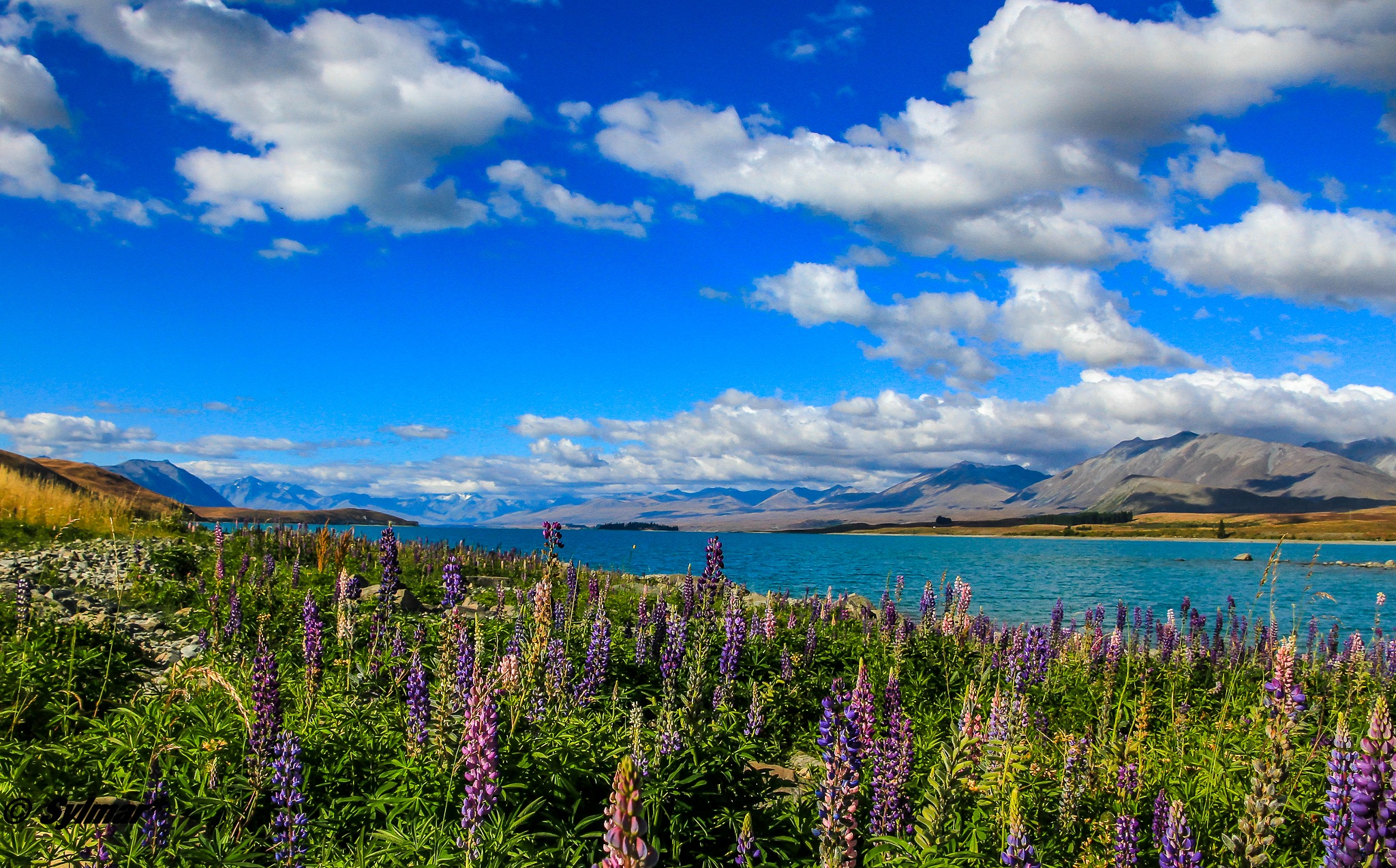 Lake Pukaki, New Zealand by Sylmar