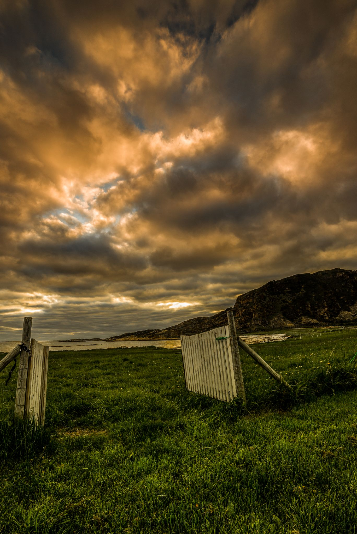 The golden gate by Terje Nilssen