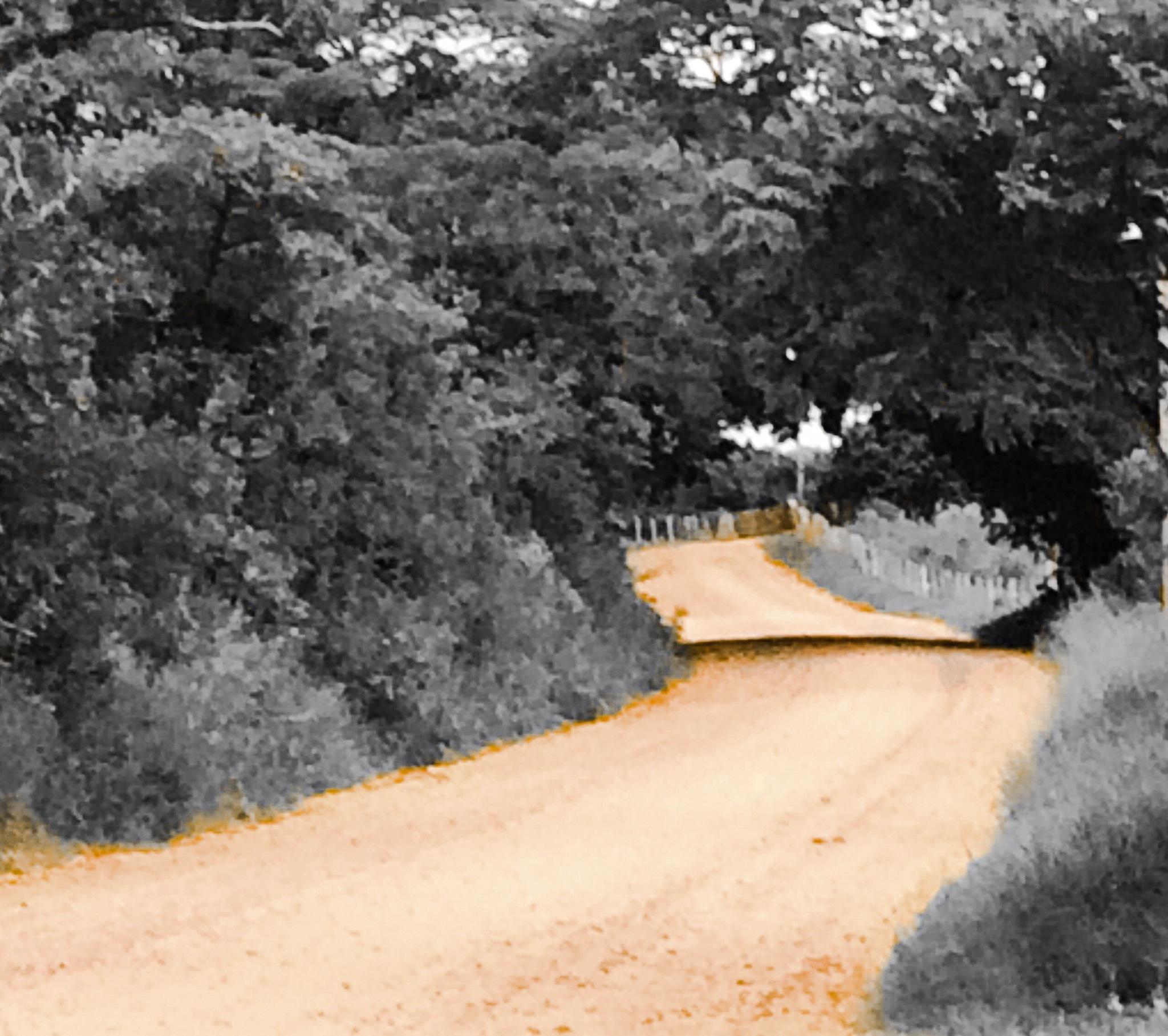 A estrada da vida é sinuosa e empoeirada  by roneilow