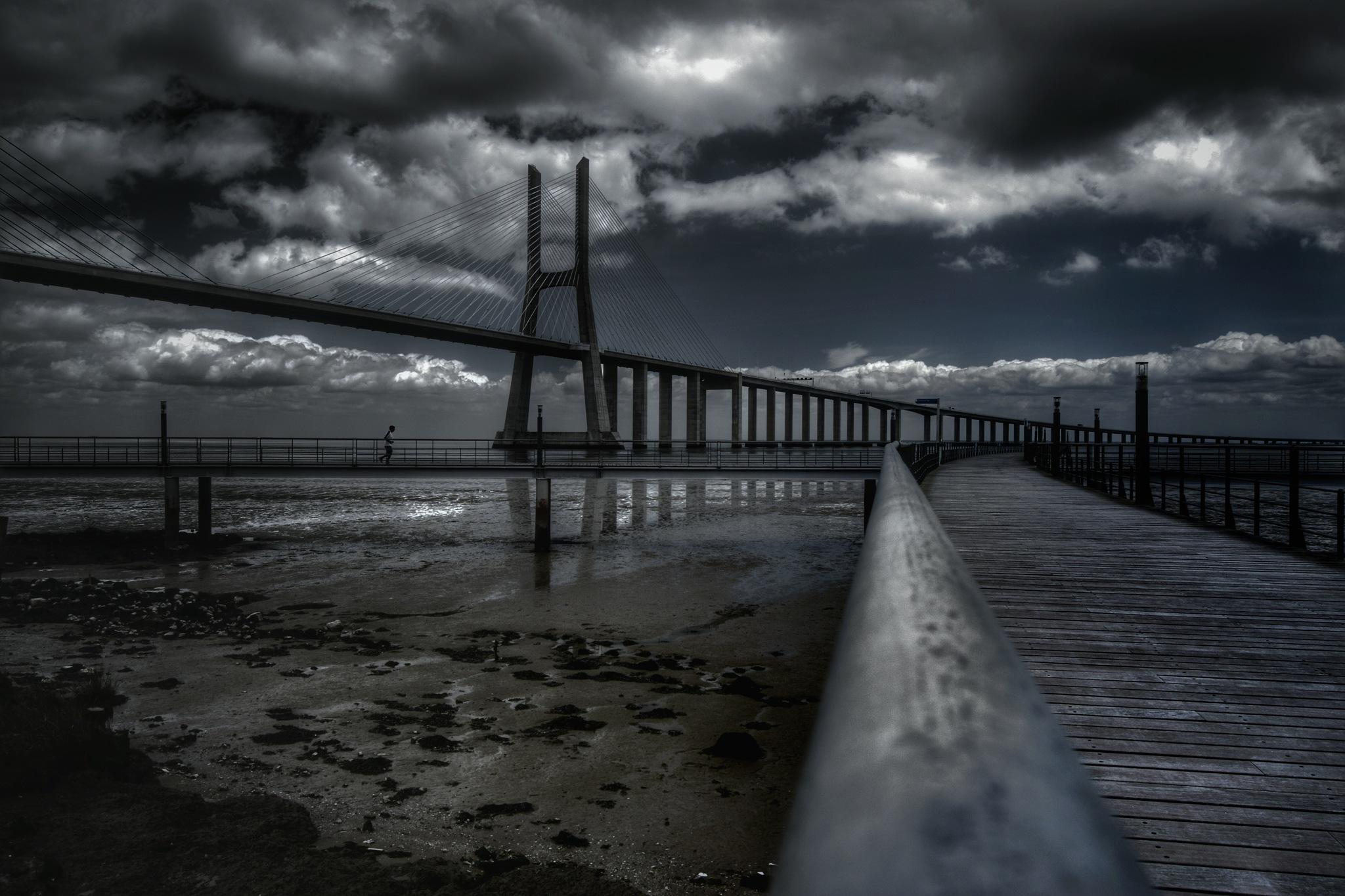 Vasco da Gama Bridge by MiguelMartins