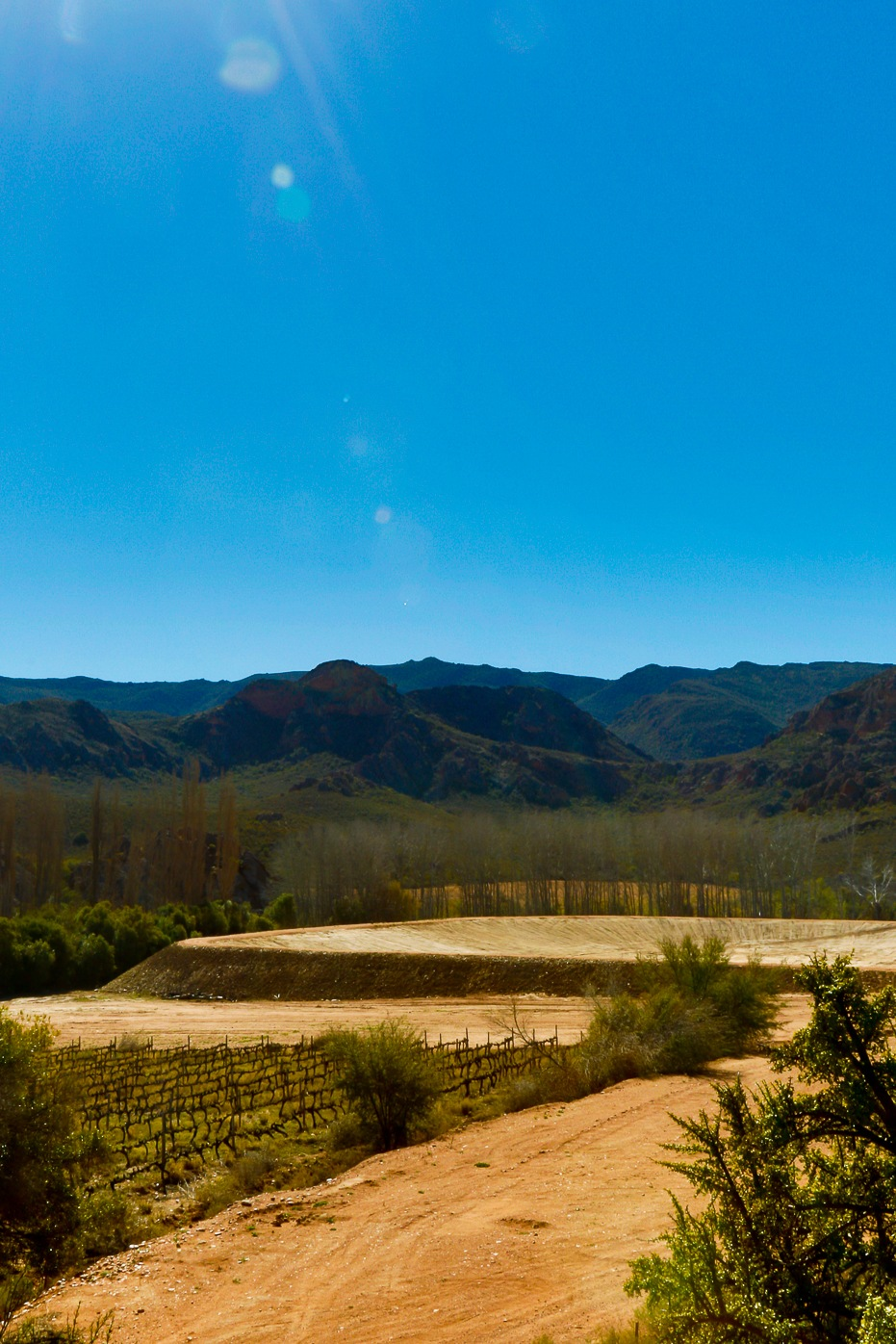 Empty dam in the valley of Calitzdorp  by Mark de Scande