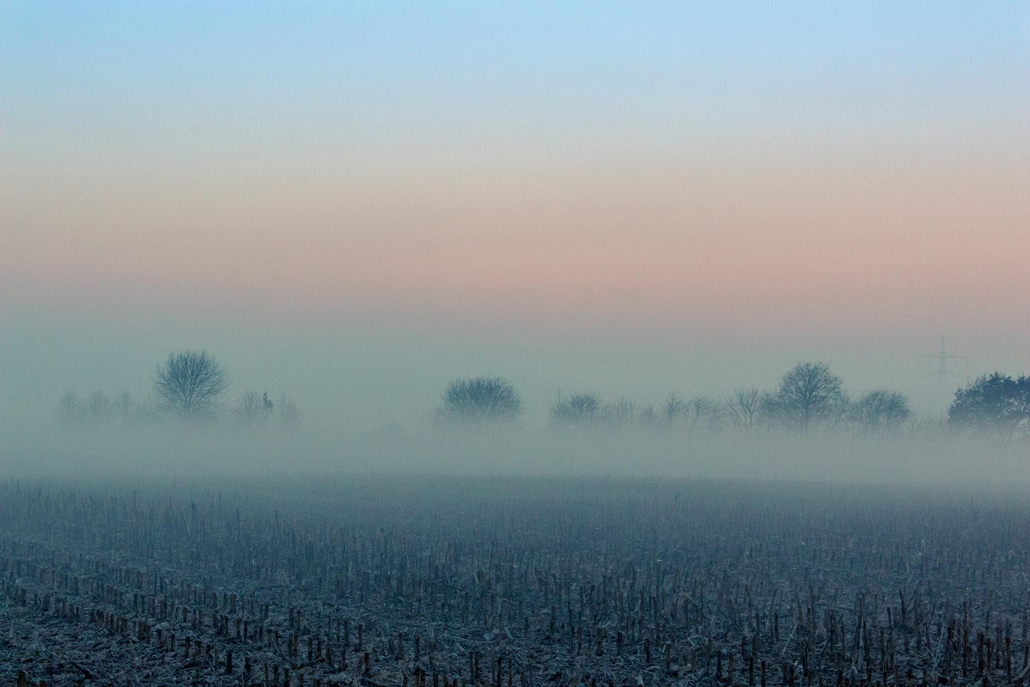 dusk by John Palmer