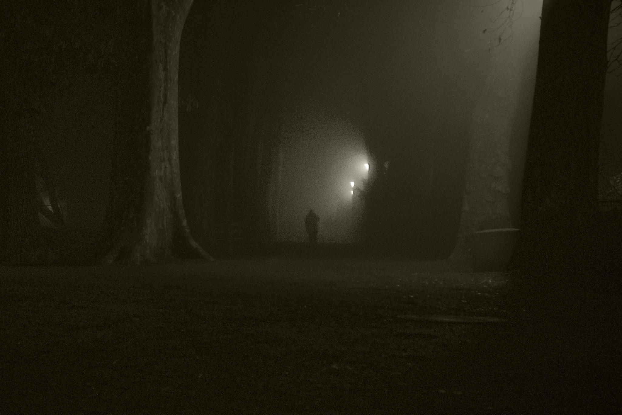 dark passage  by John Palmer