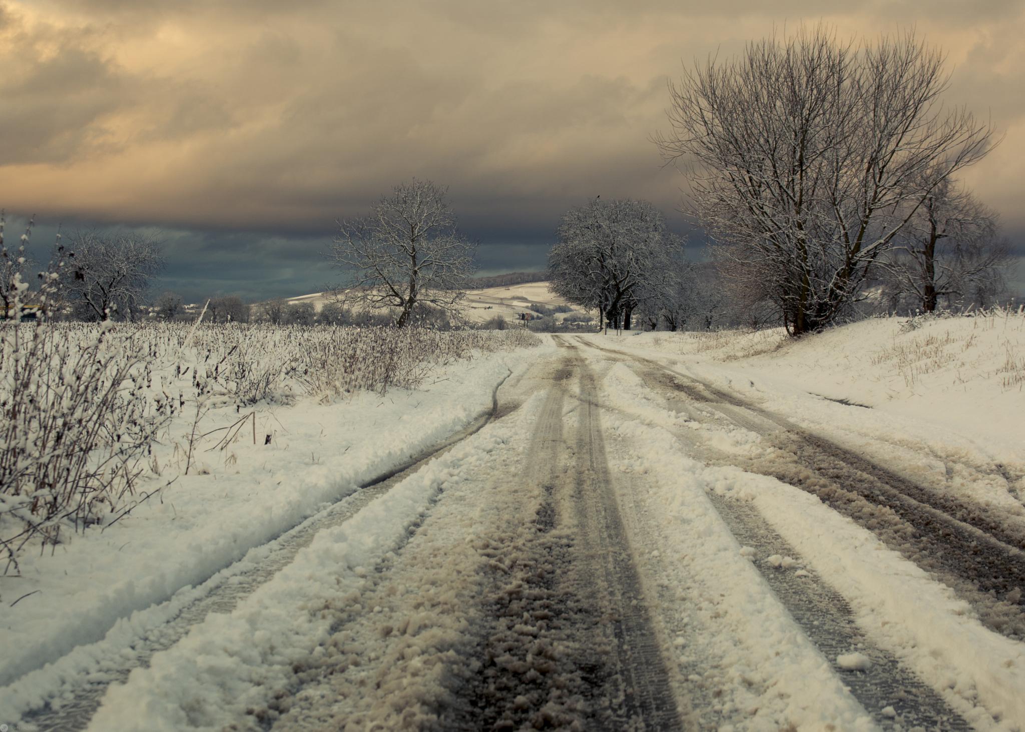 frozen  by John Palmer